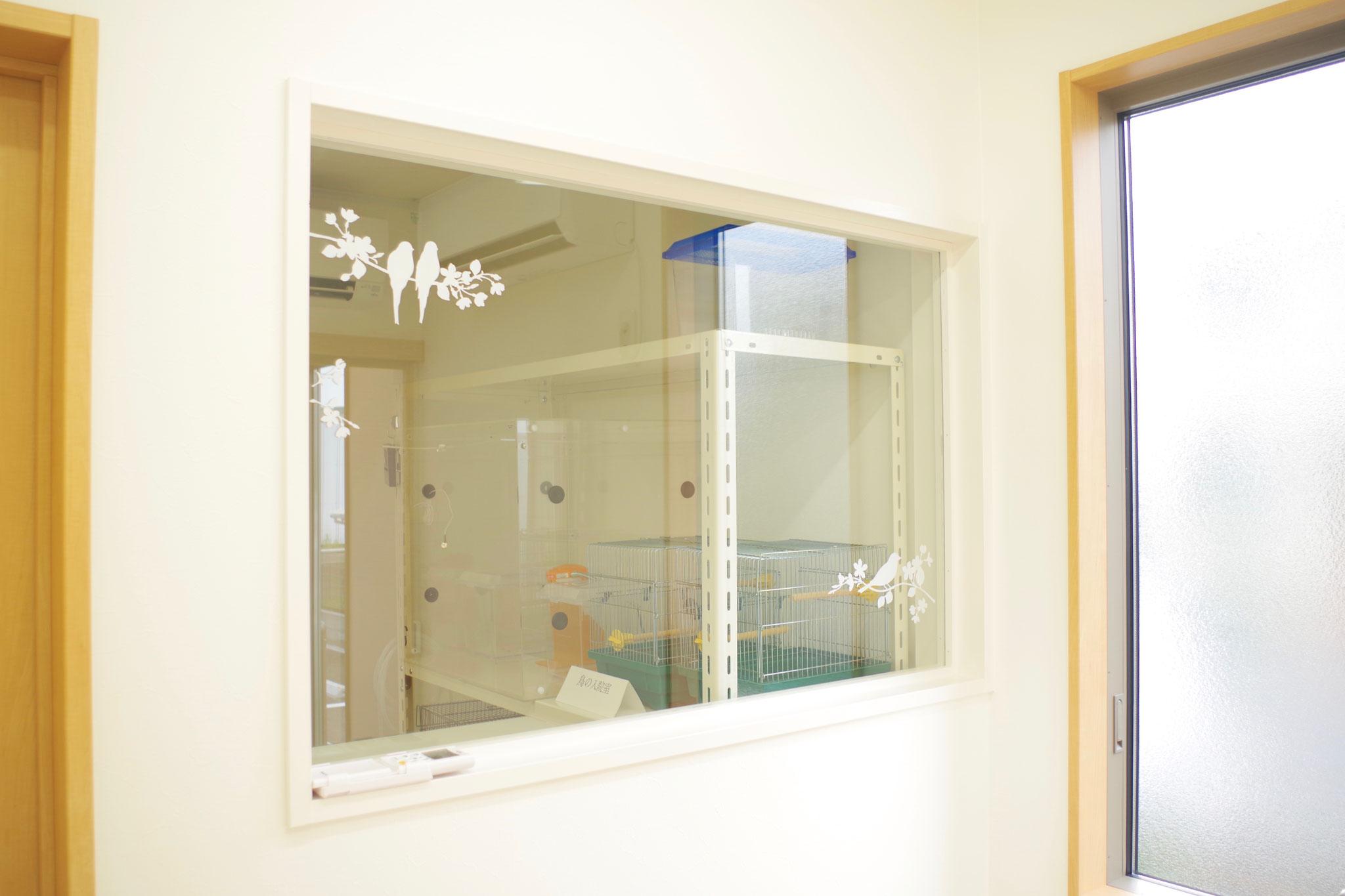 鳥の診察室