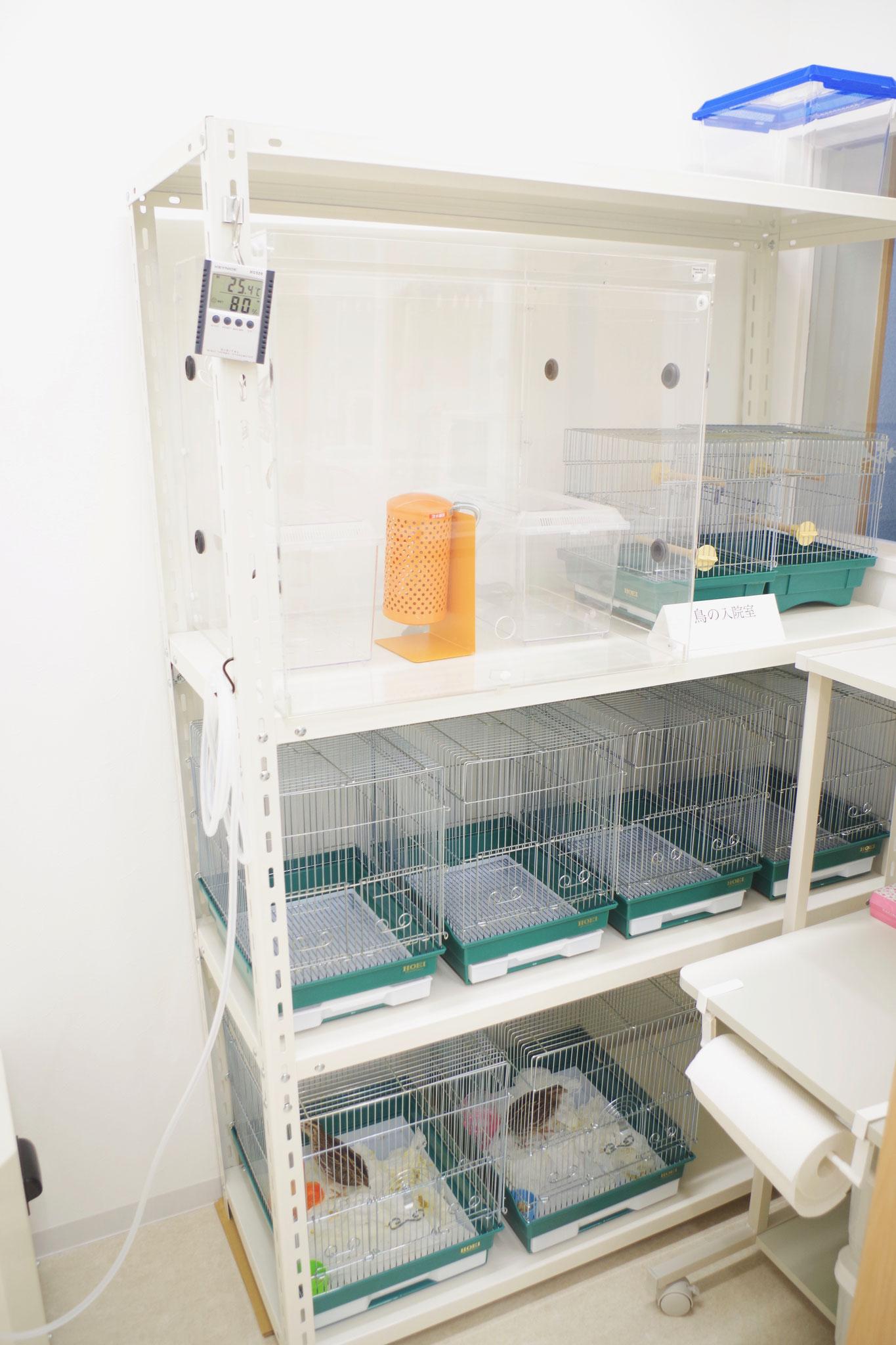 鳥の入院室