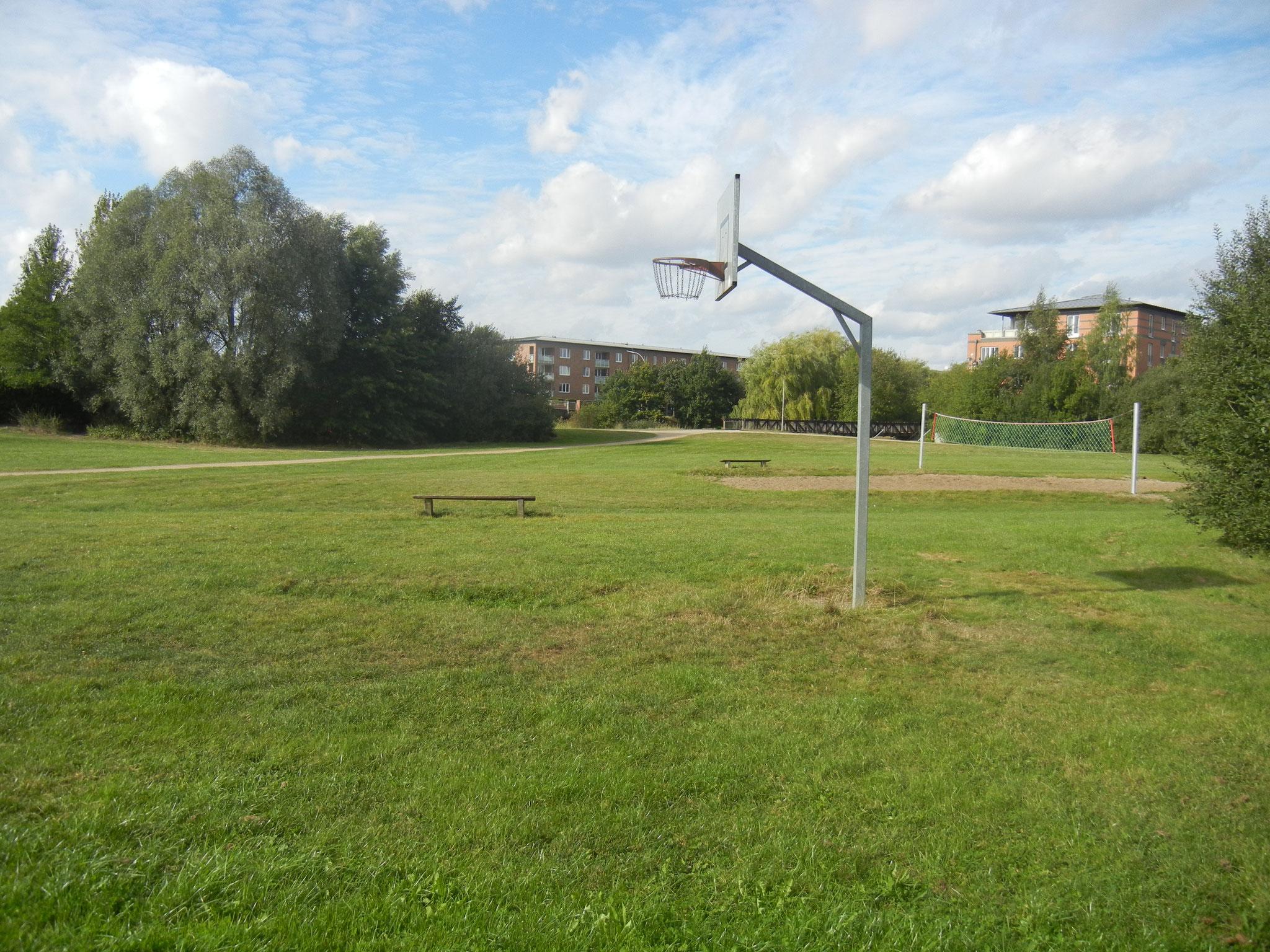 Volleyball und Basketball beim Allermöher See