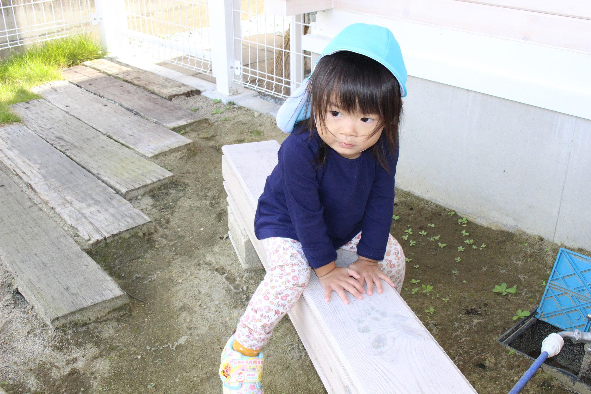 少しずつ 元気になったMちゃんのお気に入りが このベンチだね(*^-^*)