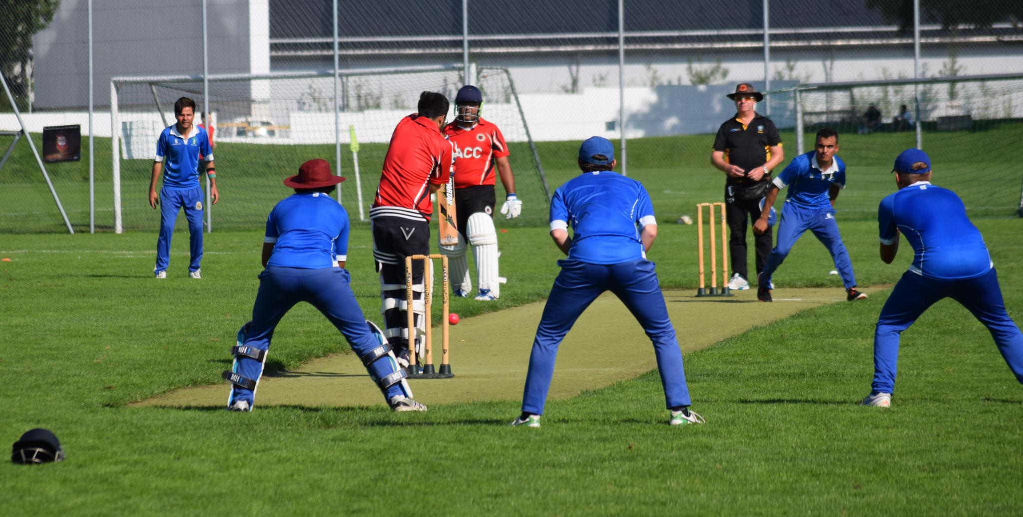 Zurich Crickets Cricket Club - Website of Zurich crickets!