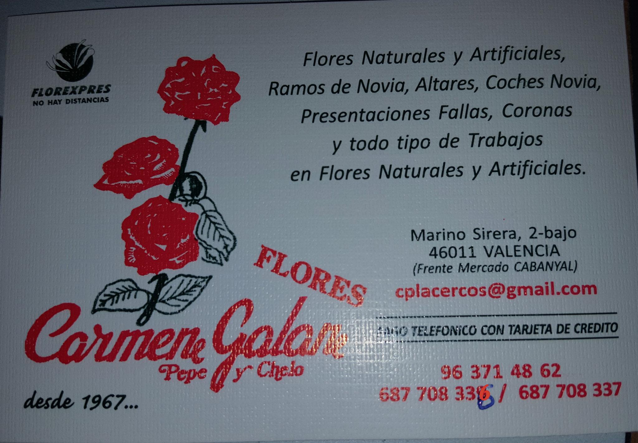 FLORES CARMEN GALÁN