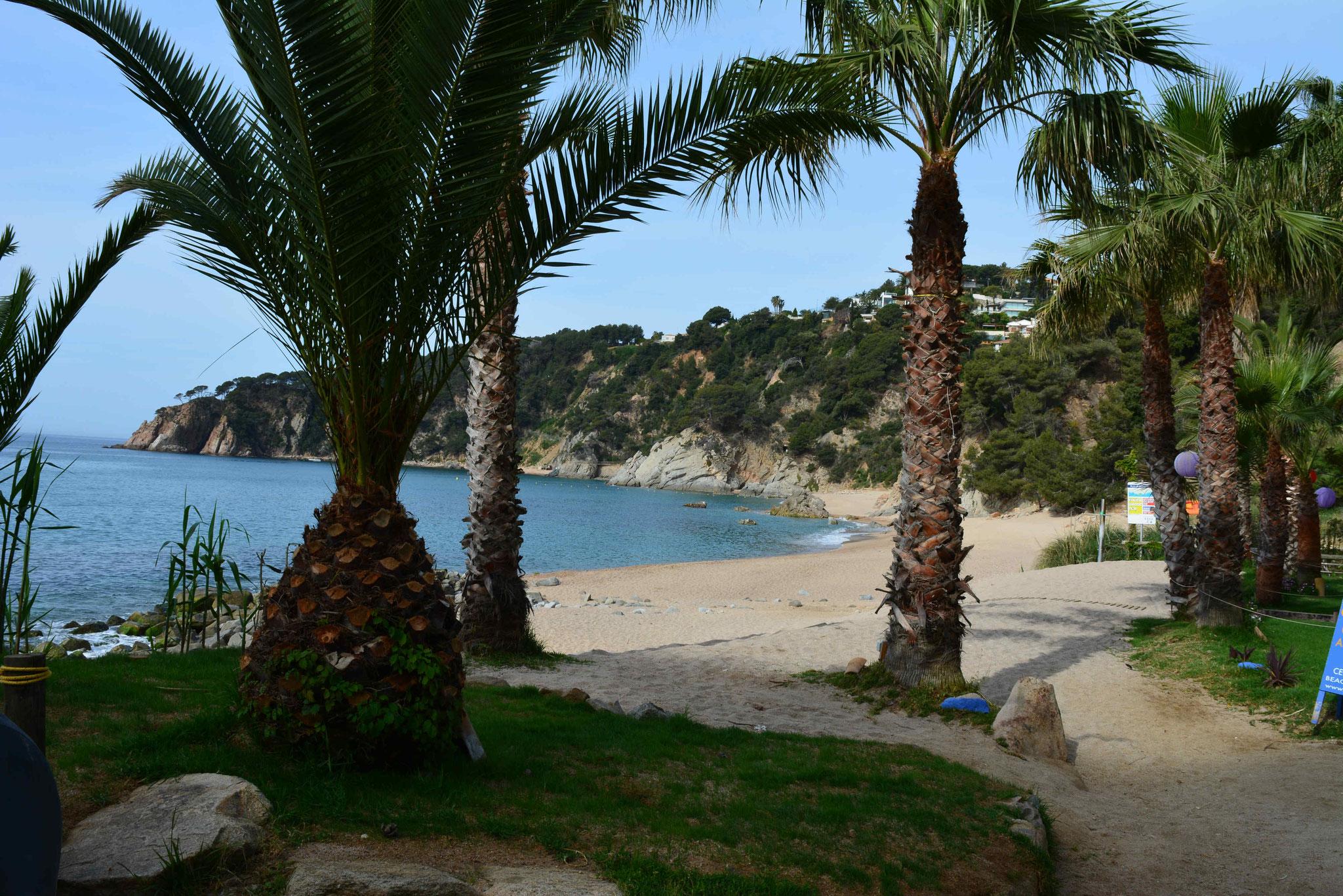 chiringuito en la playa Santa María de Llorell