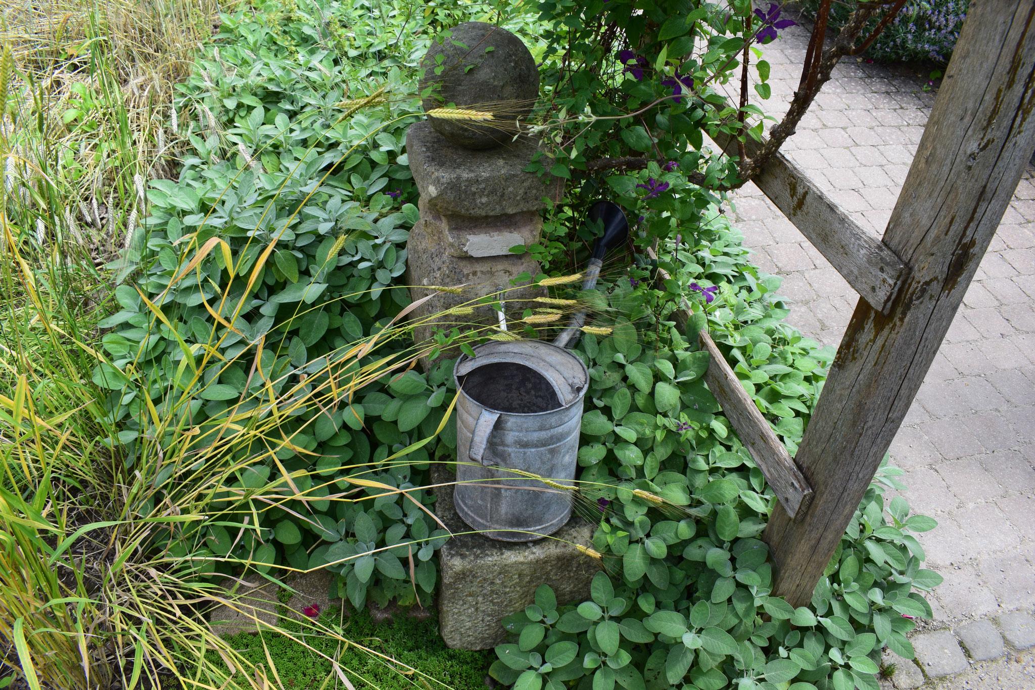 Bibelgarten am Friedhof in Bad Sooden-Allendorf
