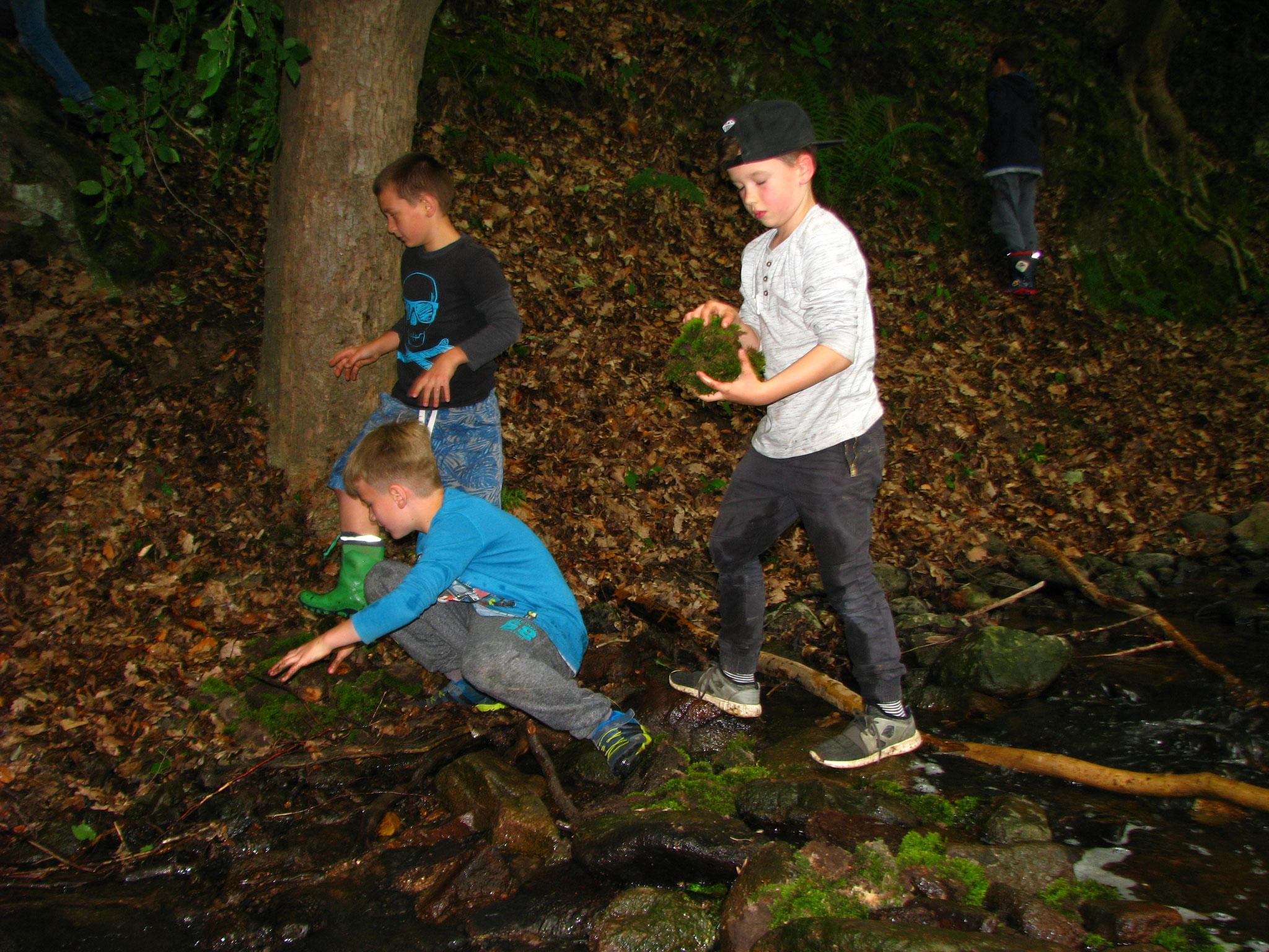 Kinder am Zschonerbach