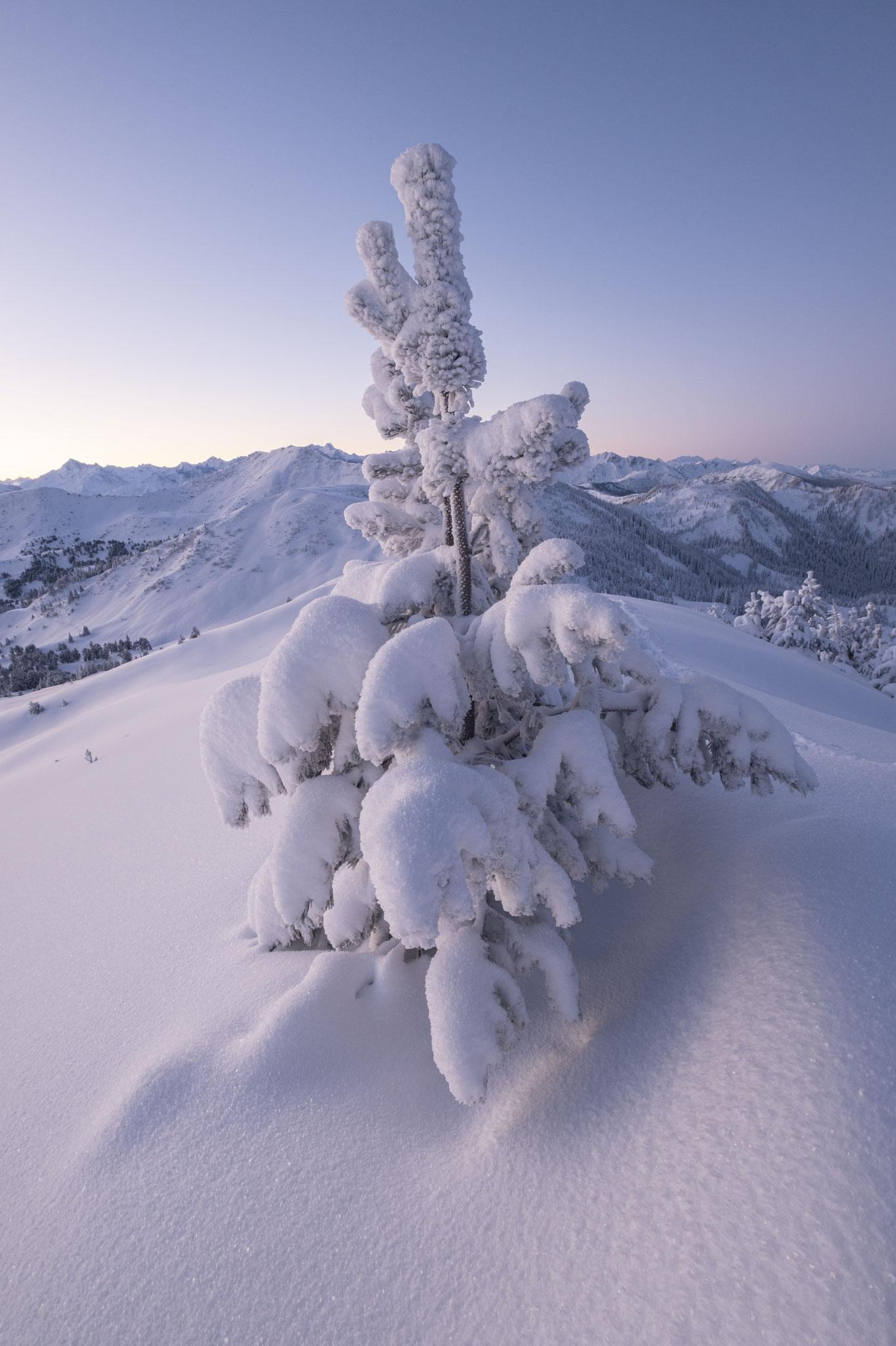 Schnee Kunst