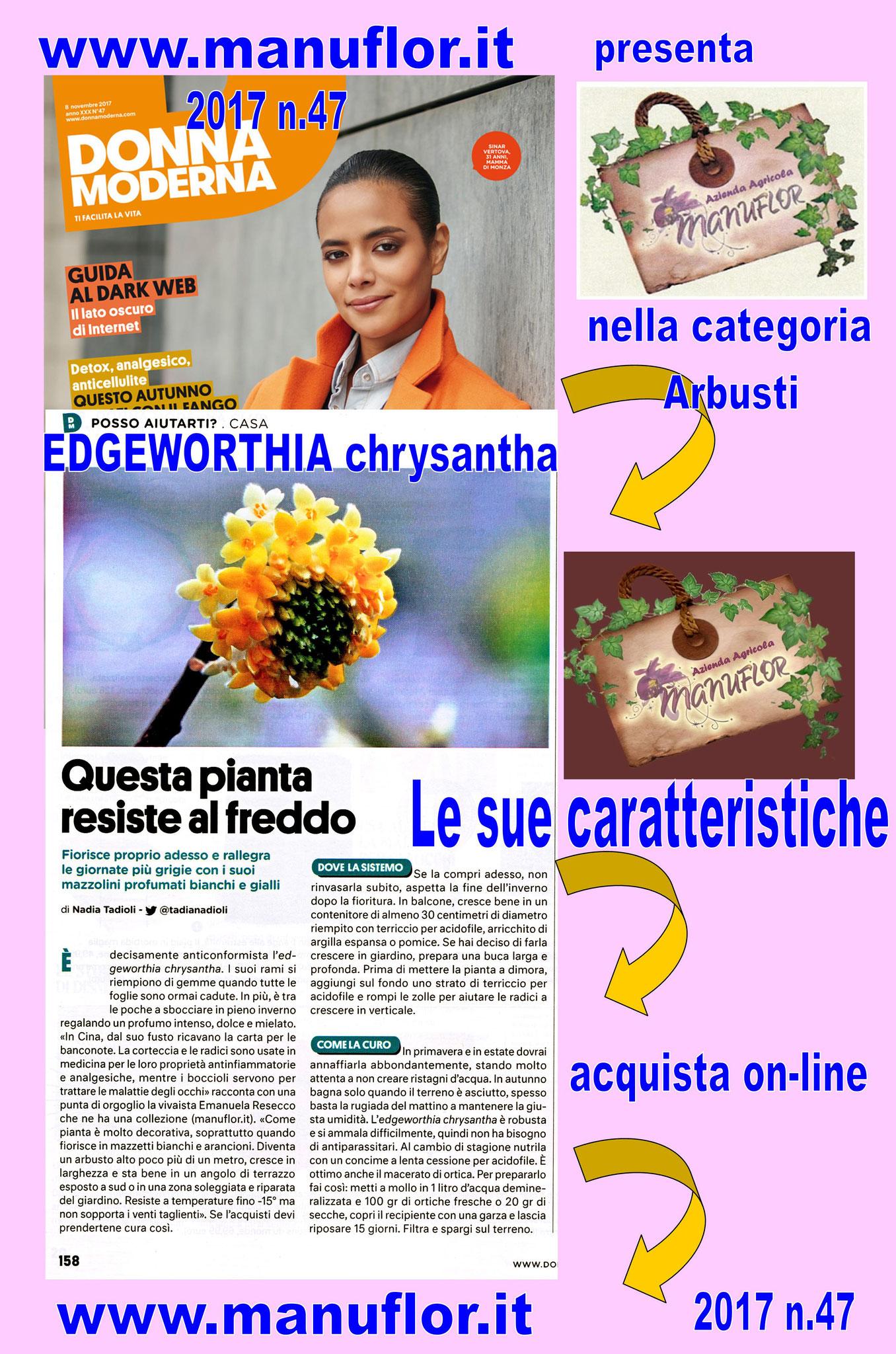2017 - Nadia Tadioli, parla di #Manuflor su Donna Moderna. Scelta per voi : EDGEWORTHIA chrysantha