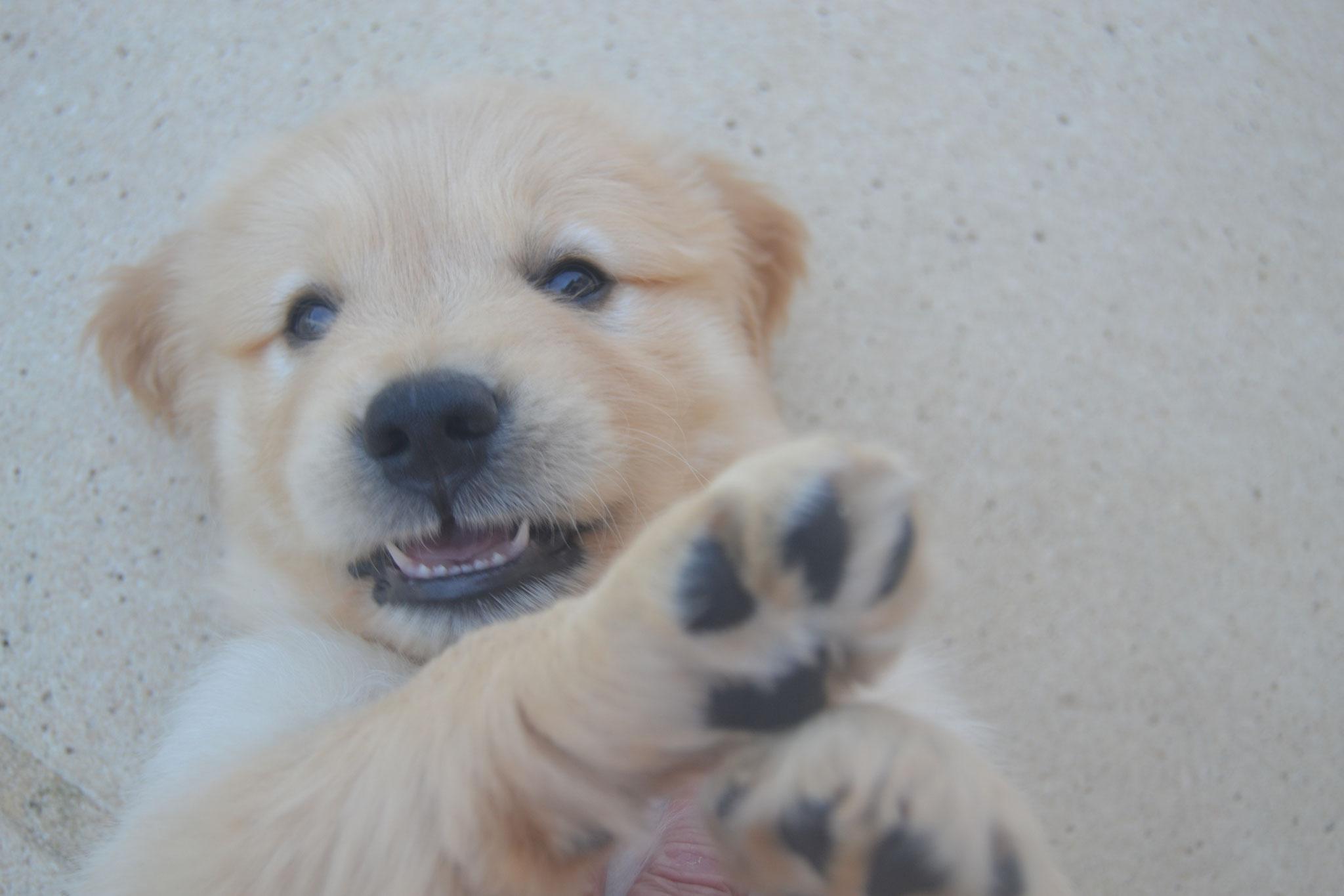 Souriez !