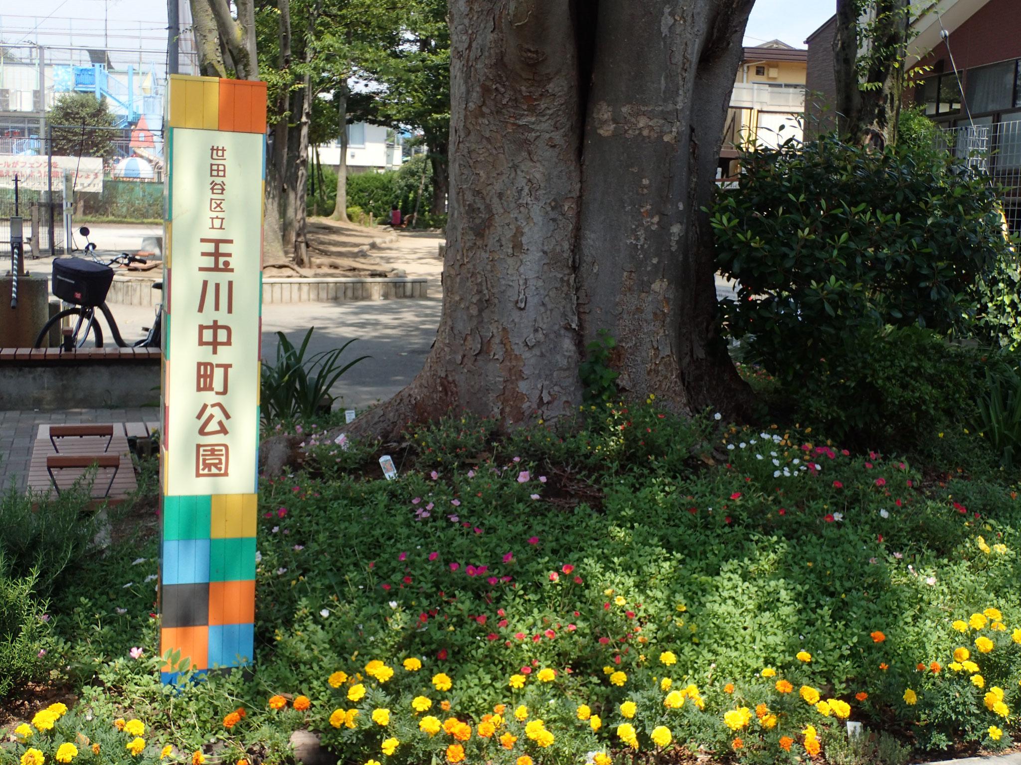 玉川中町公園 住民の憩いの公園です