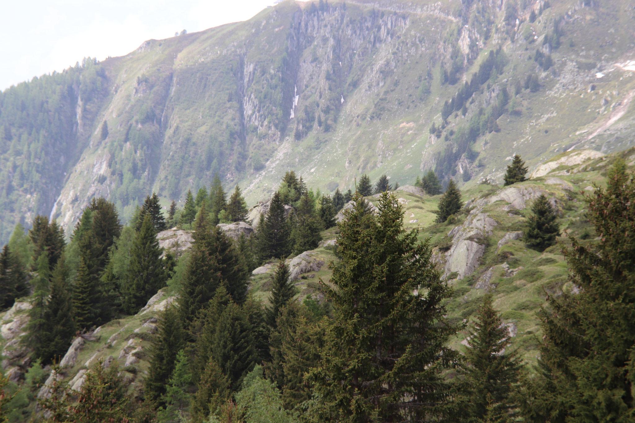 Daheim in den bergen fortsetzung teil 5