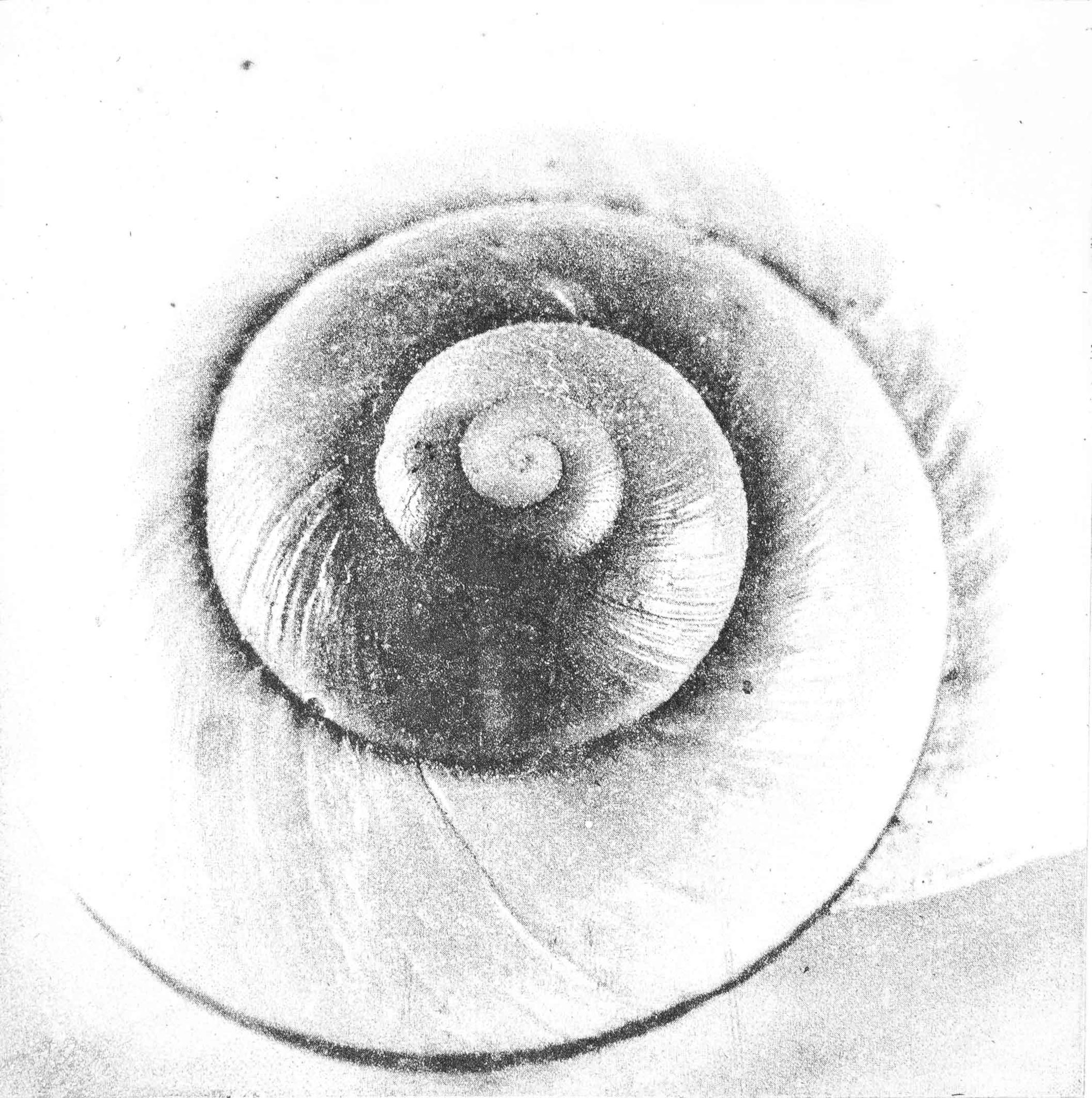 Intagliotypie, 20x30 cm, Meerhäuser
