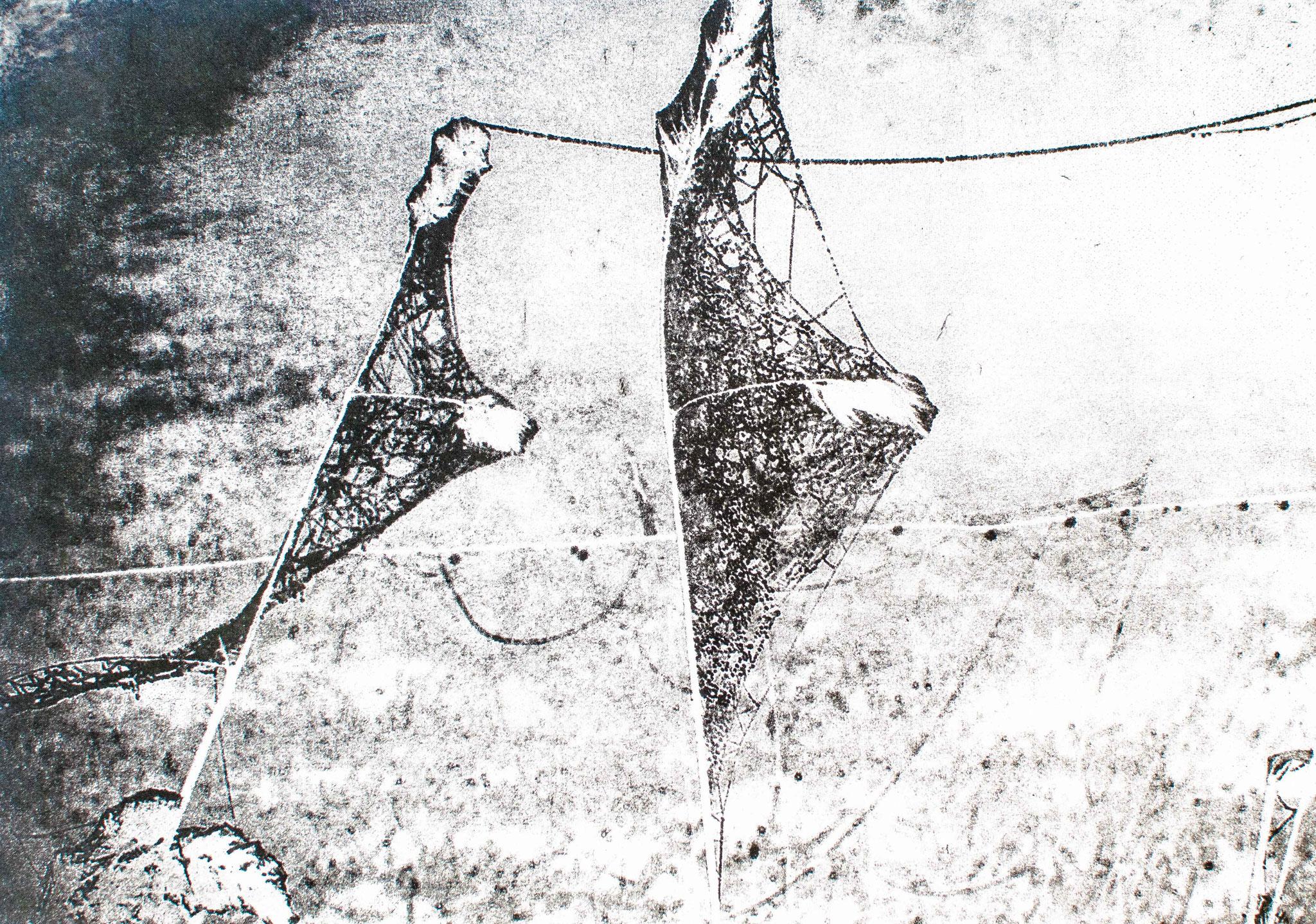 Intagliotypie, 20x30 cm,  Spinnenkunst