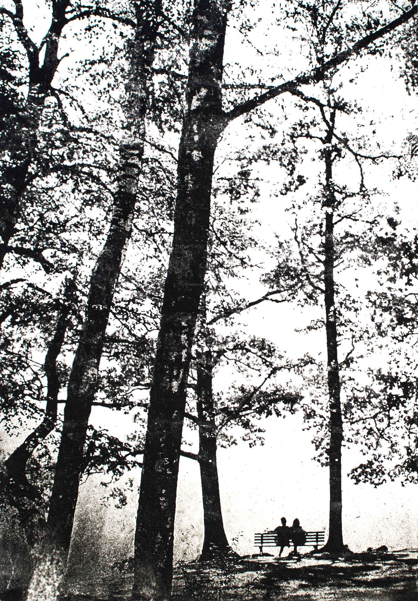 Intagliotypie, 20x30 cm, Zweisamkeit