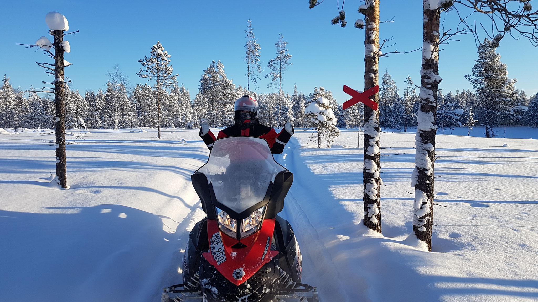 Schneemobiltour durch Lapplands Winterlandschaft