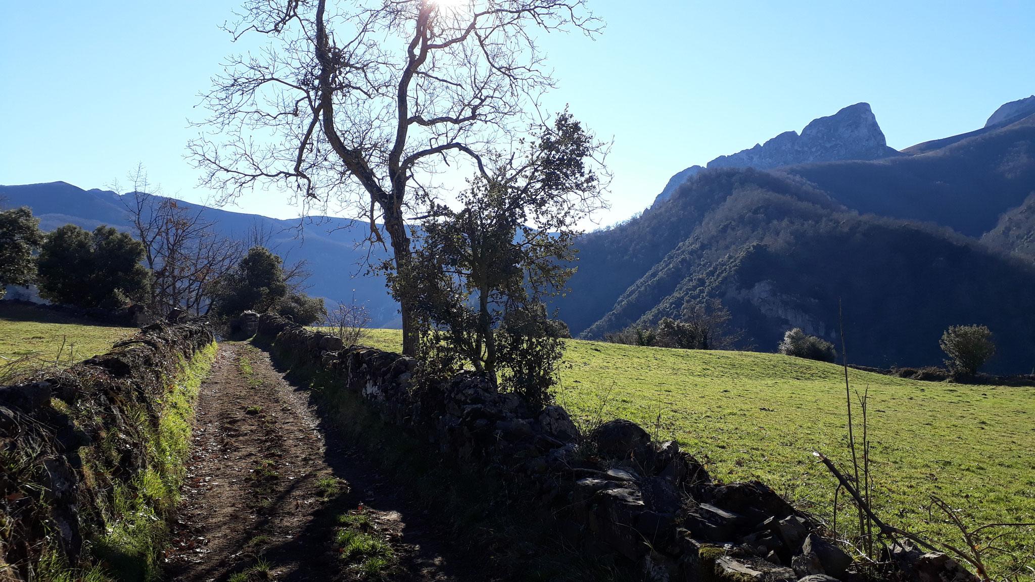 Paisaje ruta de Pueblos de Pesaguero