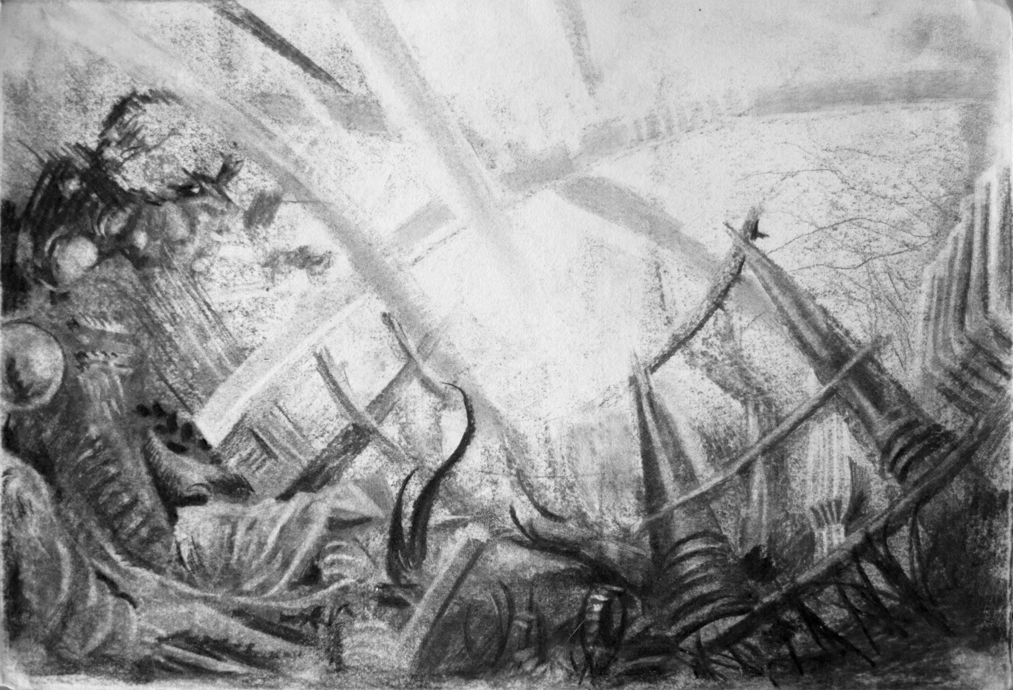2013 - Arena - Charcoal on paper 60 x 40 cm - AVAILABLE