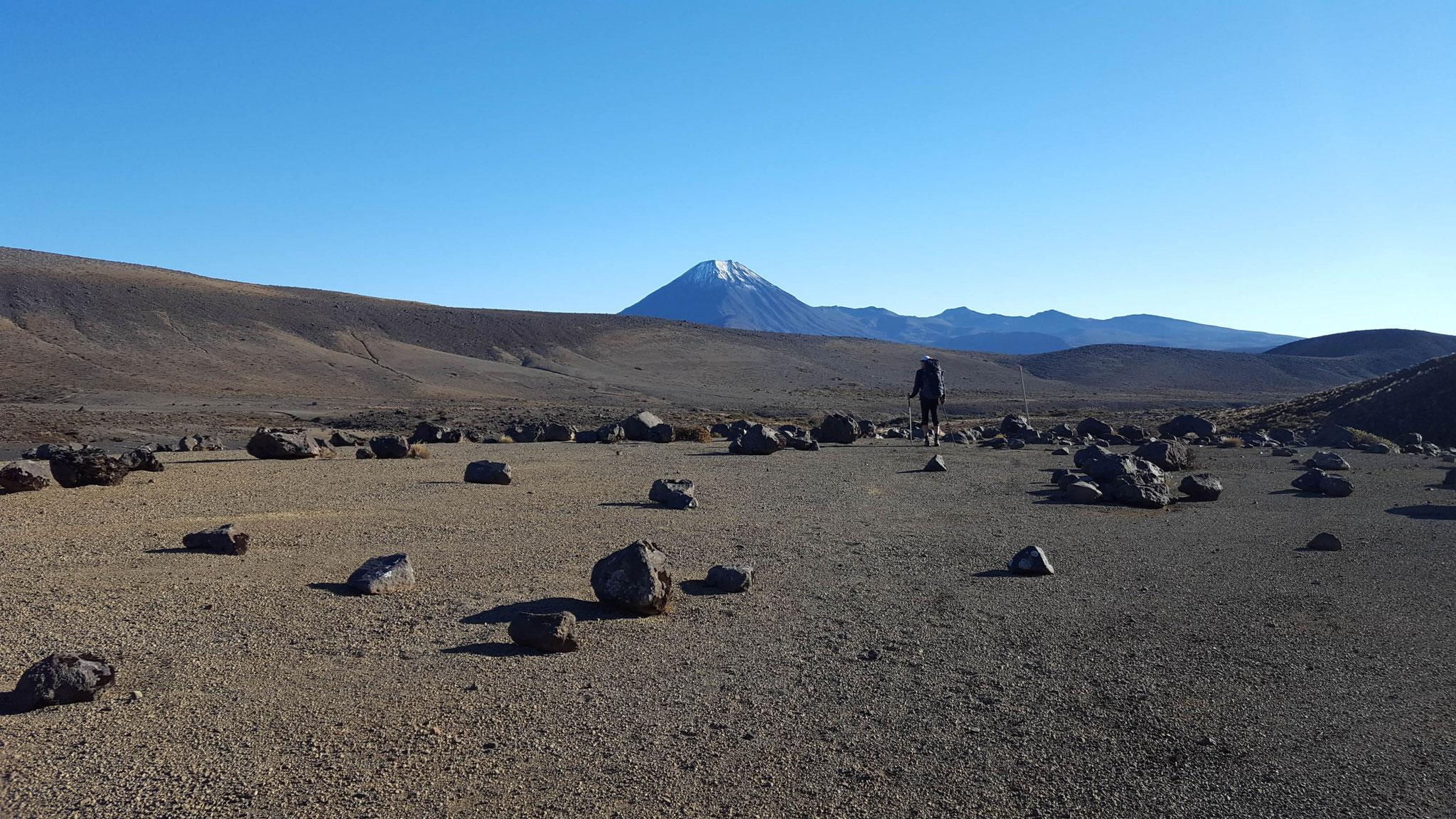 durch die Wüste östlich des Ruapehu mit Blick auf den Ngauruhoe