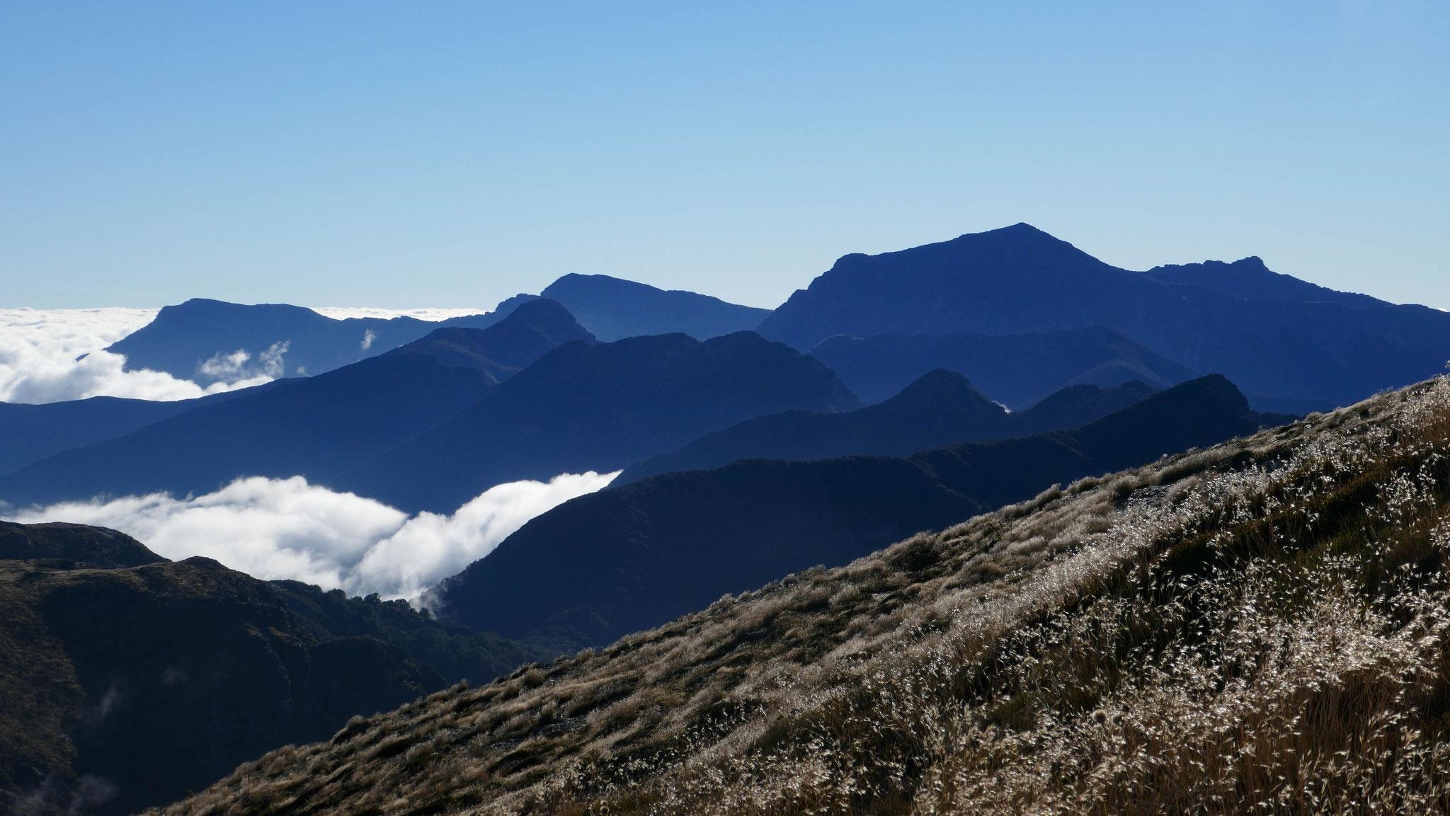 Te Araroa Richmond Range