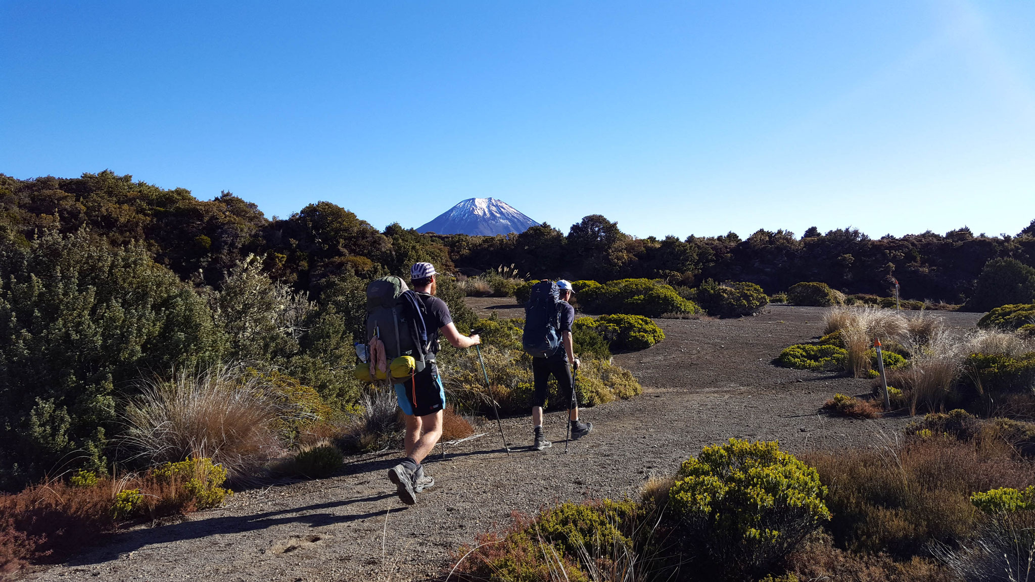 Der Vulkan Ngauruhoe im Blick