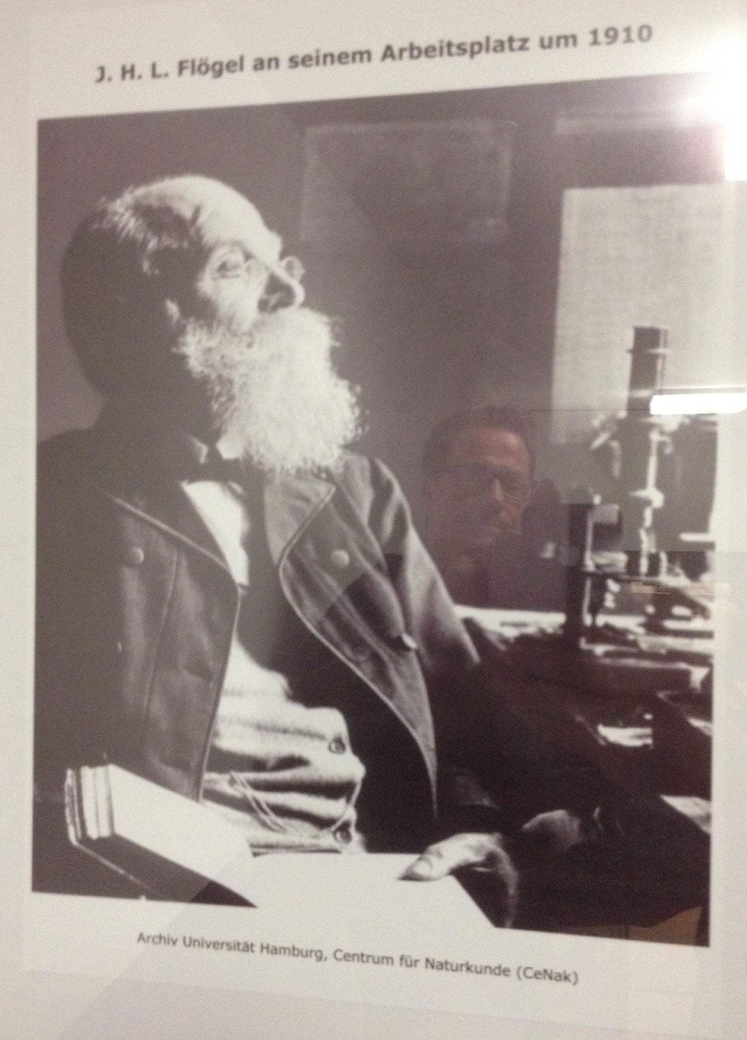 Dr. Johann Heinrich Ludwig Flögel