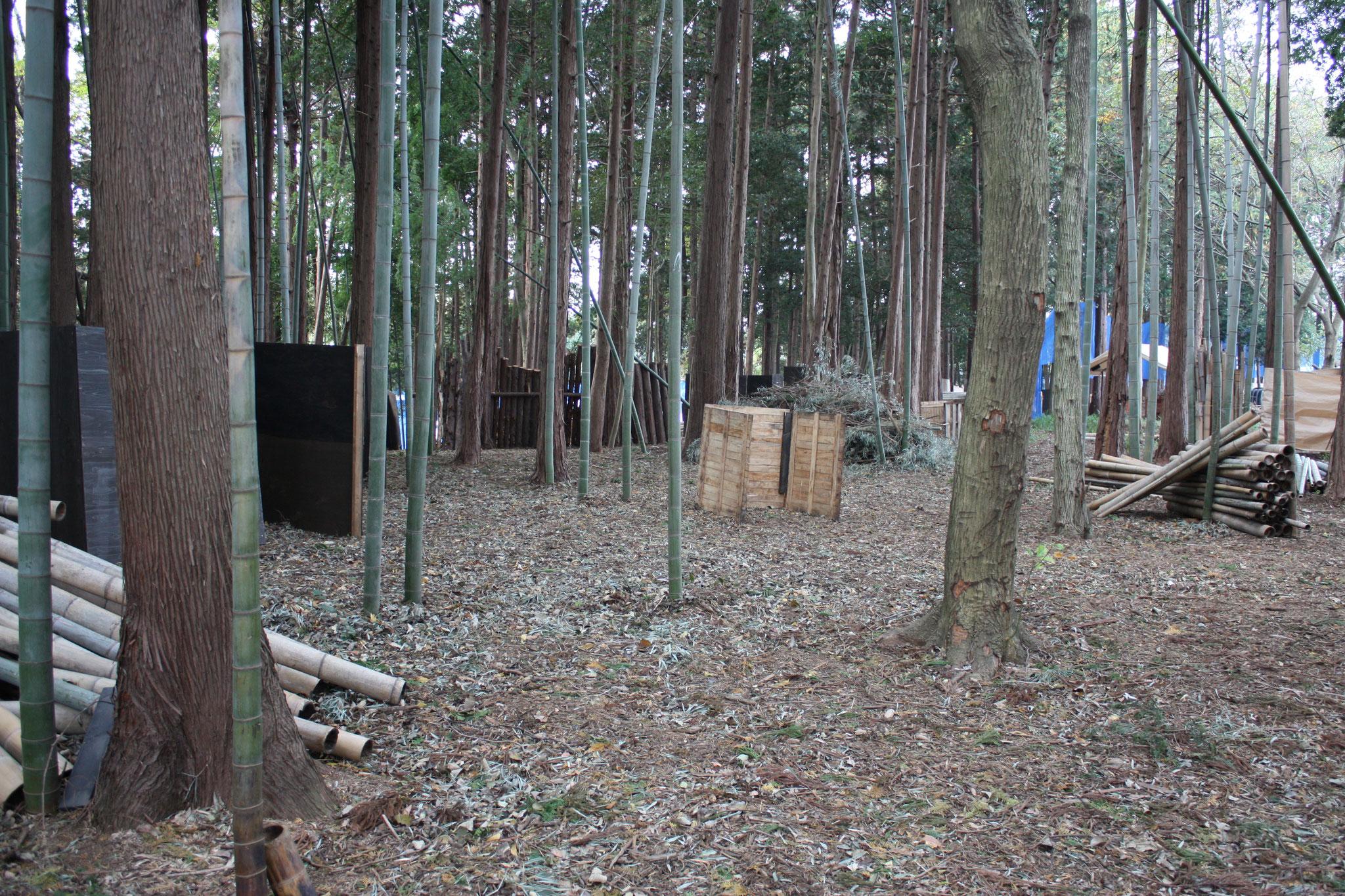 森林エリア