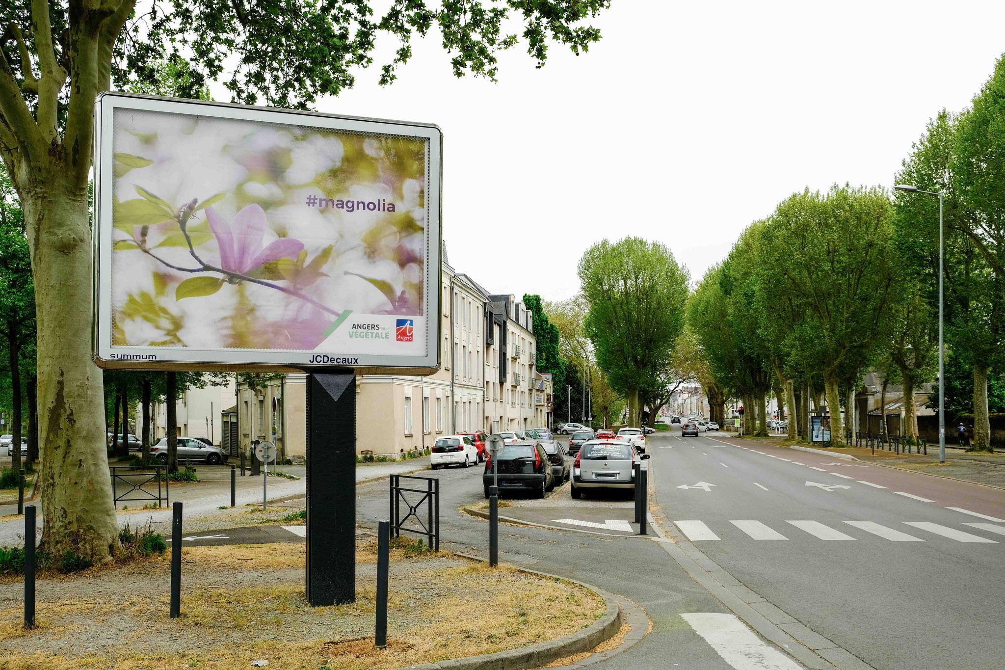 Angers Ville Végétale