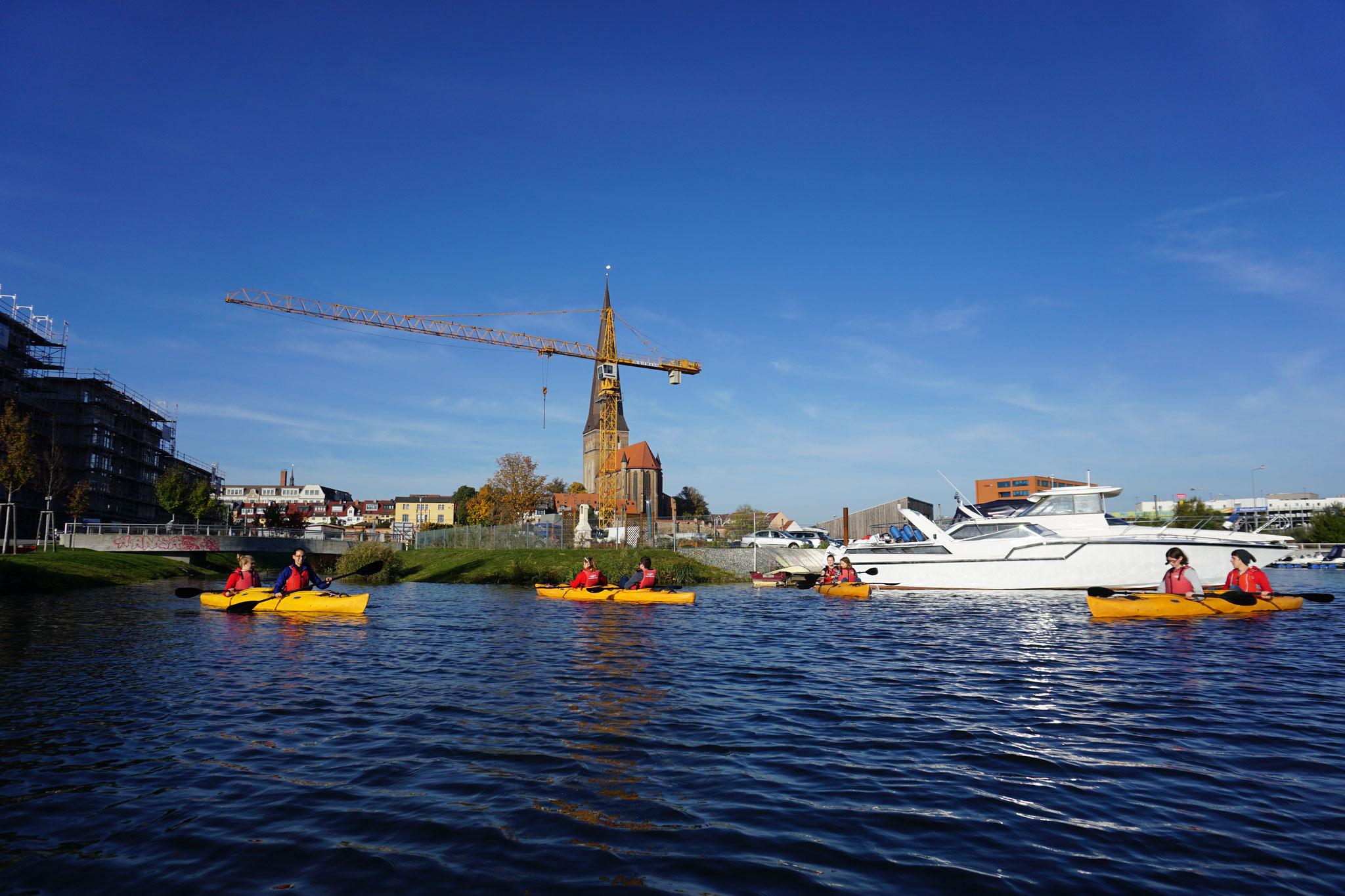 Foto: NAJU Hamburg
