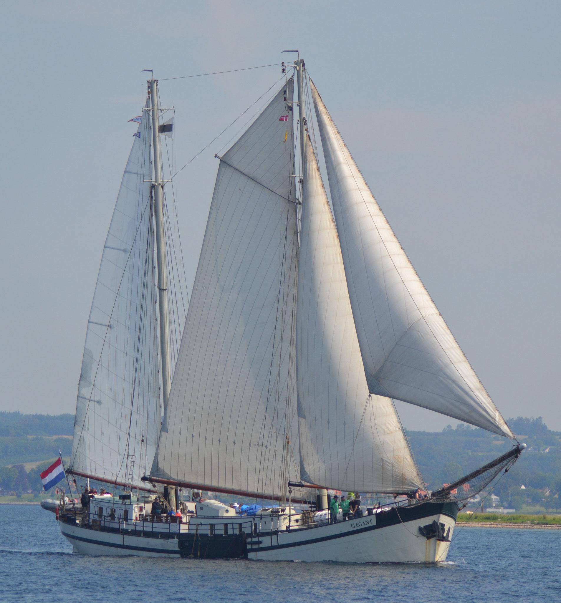 Segelschiff Elegant