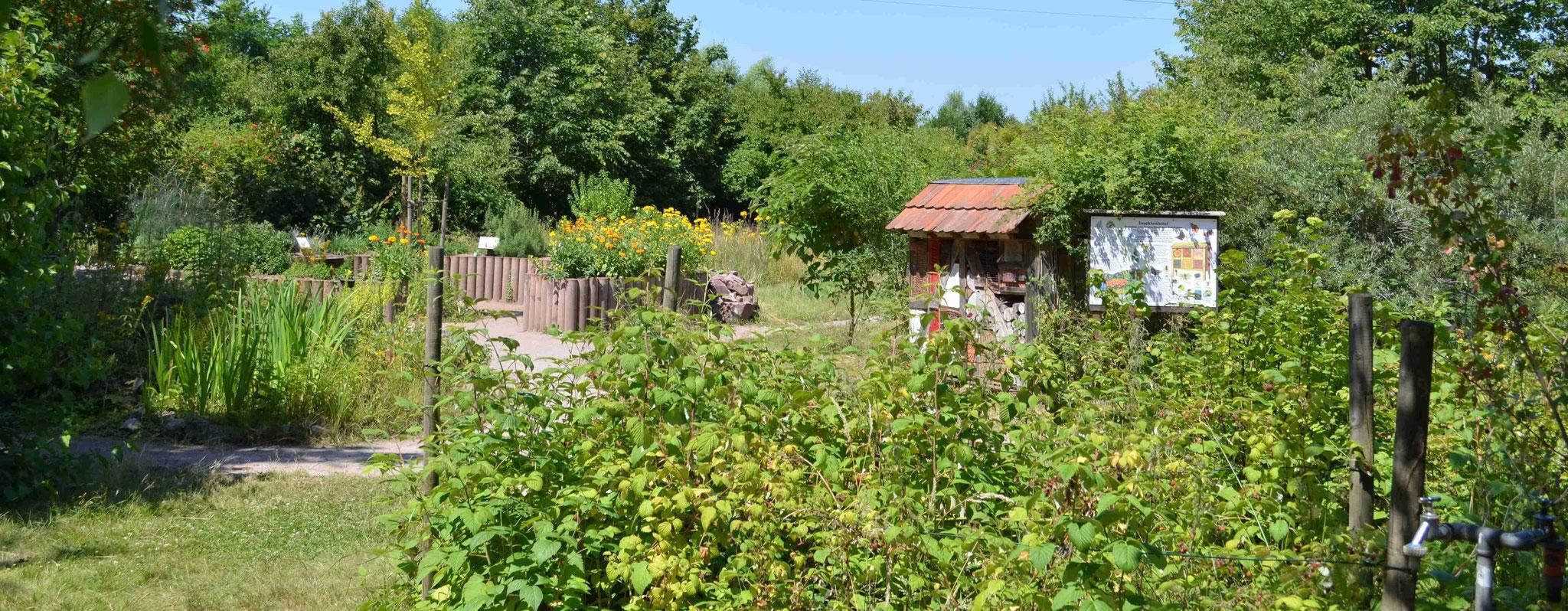 Der Kräutergarten mit Insektenhotel