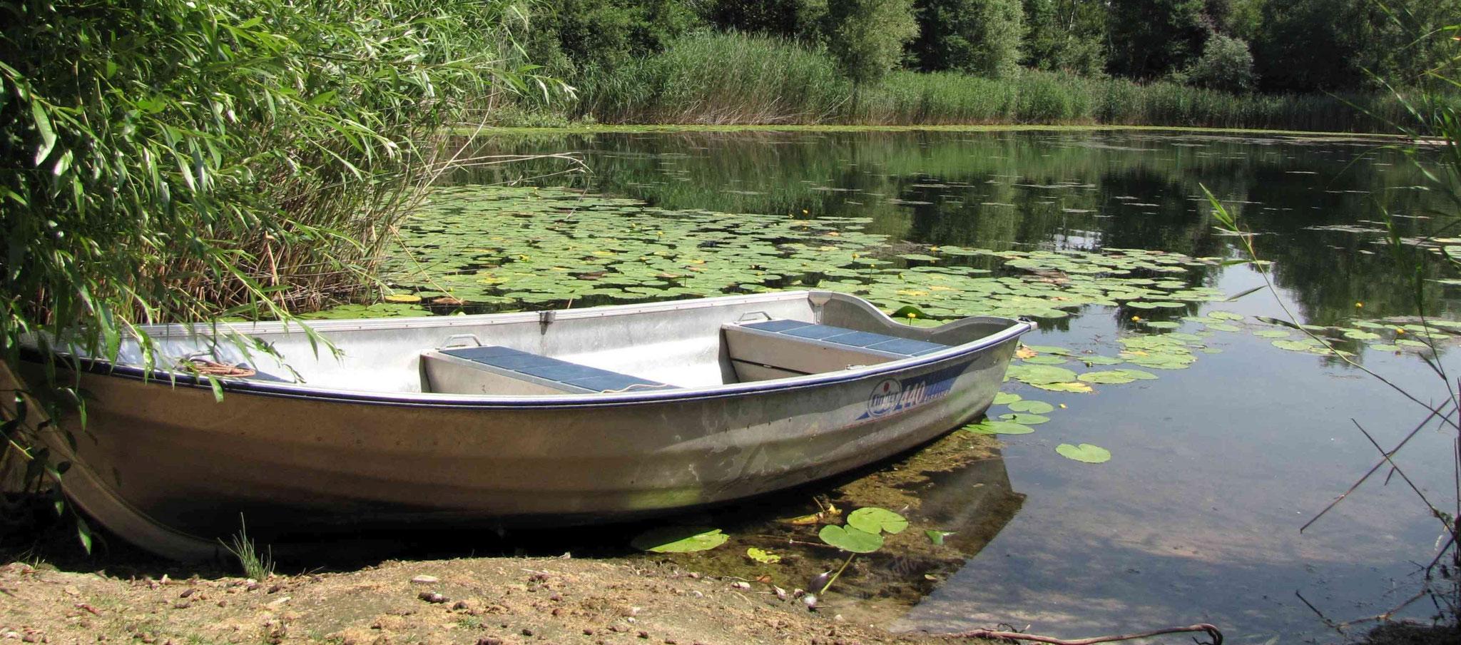Das Ruderboot am See