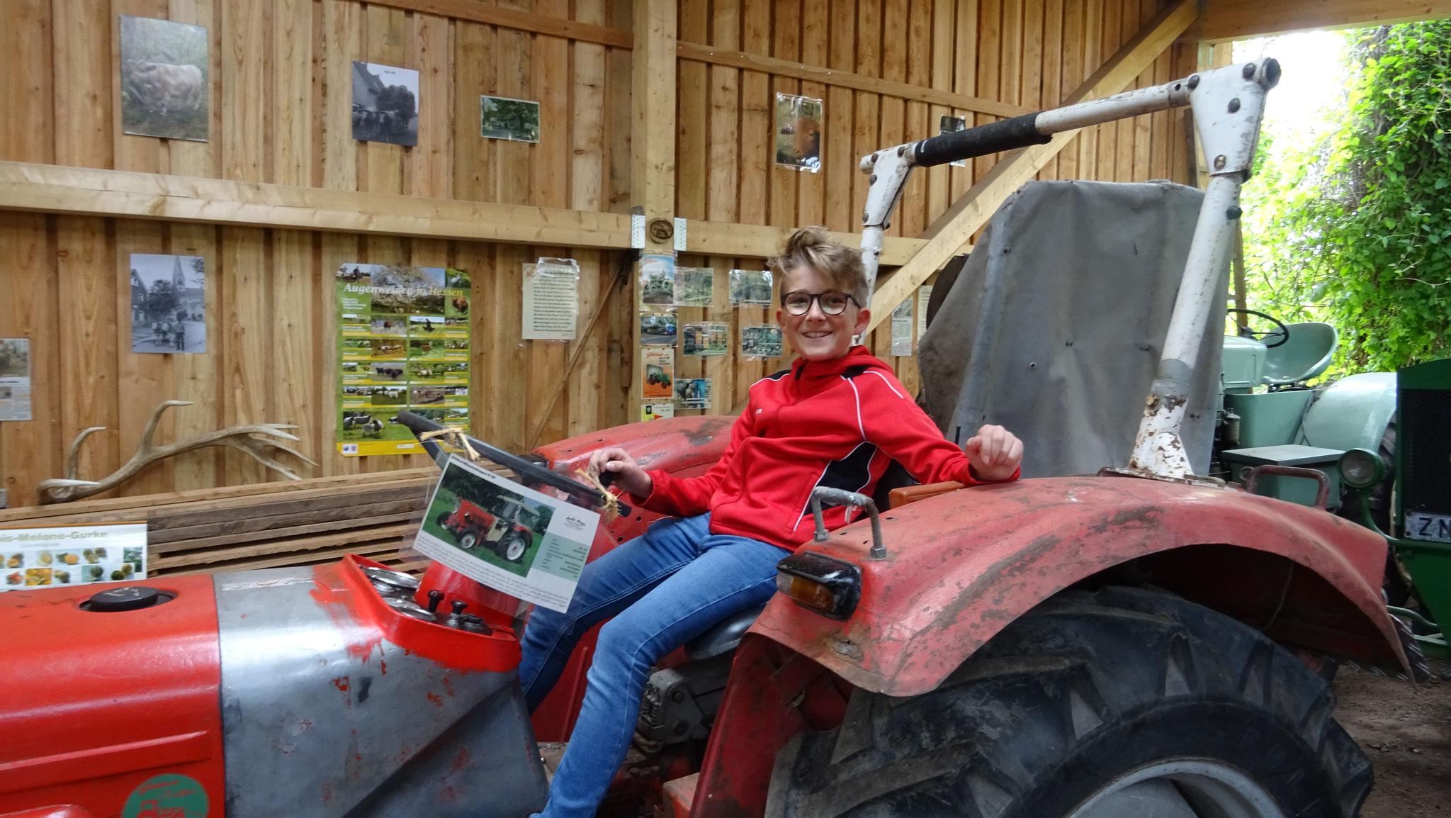 Die z.t. historischen Traktoren sind ein Highlight für die Traktorfans