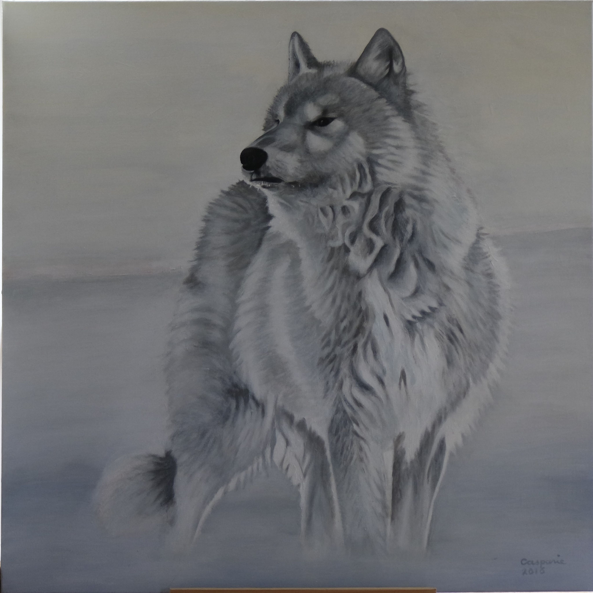 Poolwolf, Acryll op linnen, 90 x 90 cm.