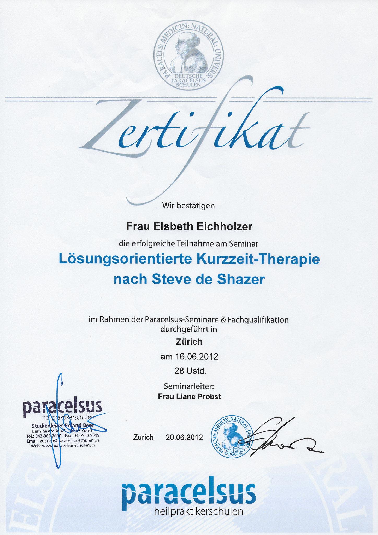 Paracelsus - Lösungsorientierte Kurzzeit-Therapie