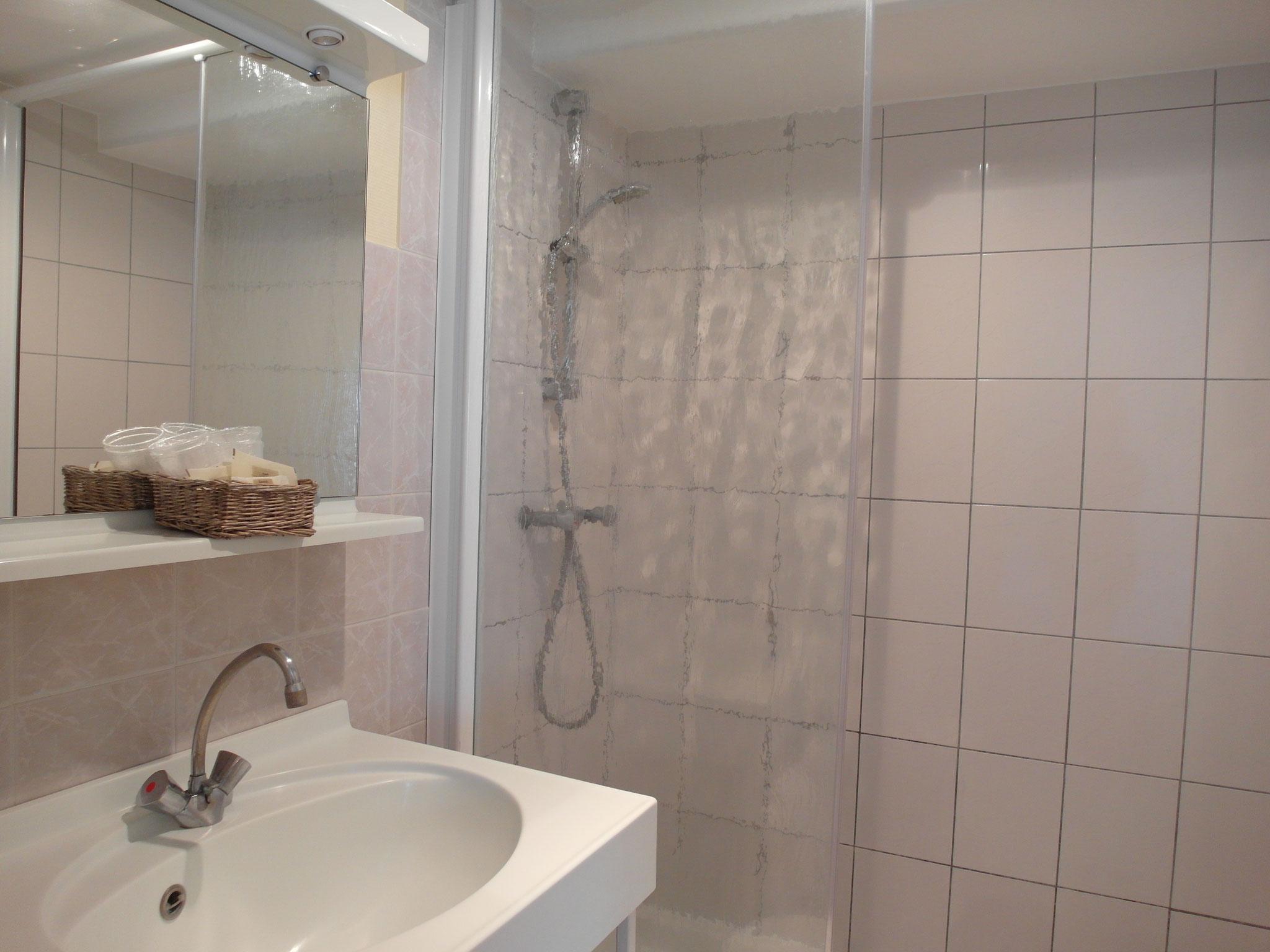 Salle de bain avec une douche