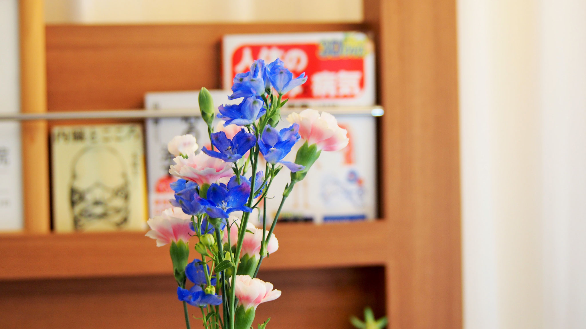 色とりどりの花を飾っています