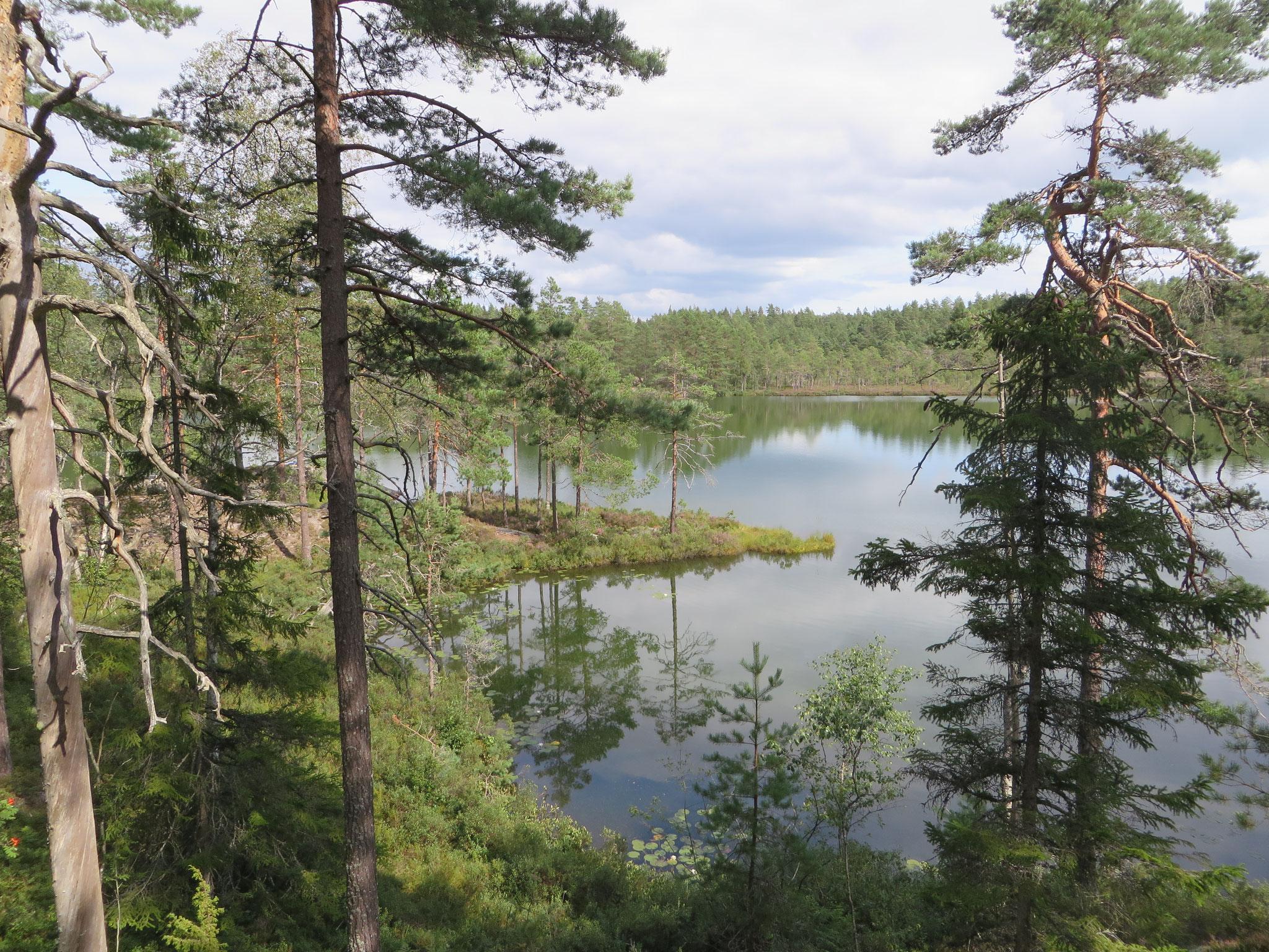 Nationalpark Tiveden - Heimstatt der Trolle