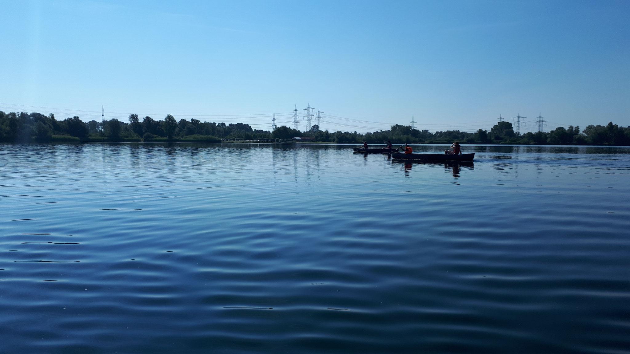 Das typische Panorama des Erlichsees - Natur und Hochspannung.