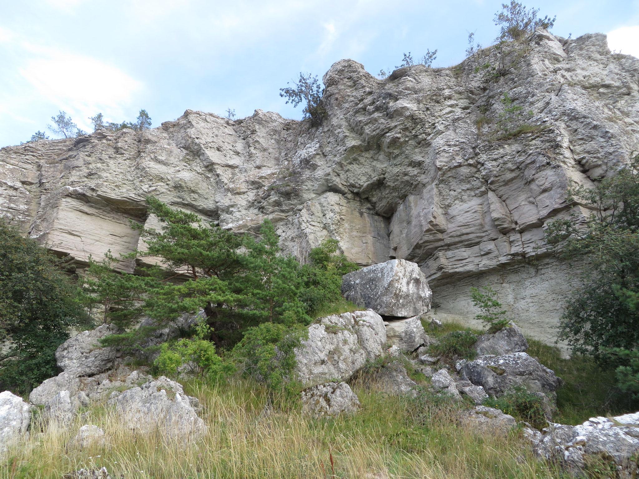 Klippen nördlich von Visby/Gotland