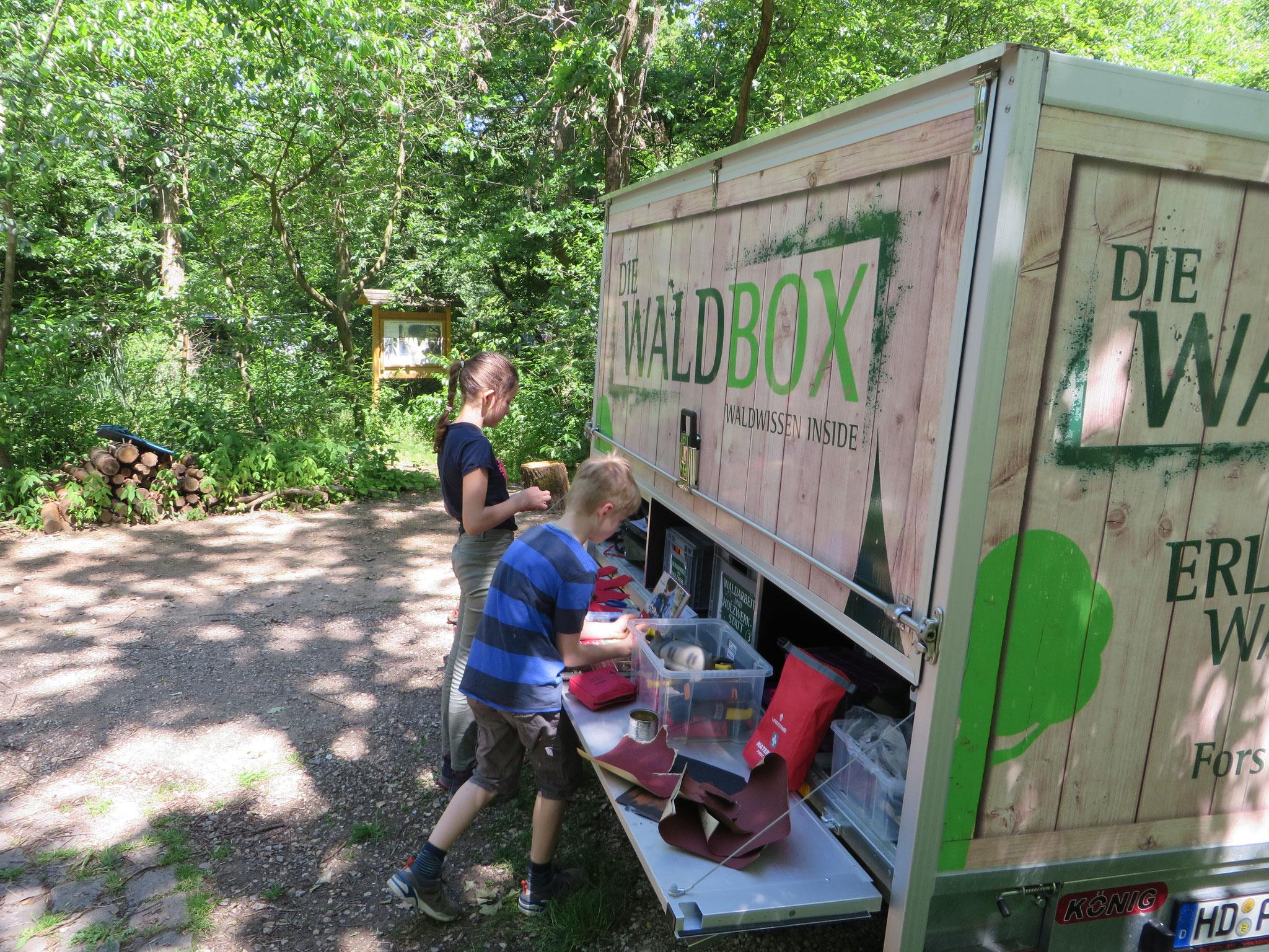 Werkzeuglager auf der Waldbox-Theke.