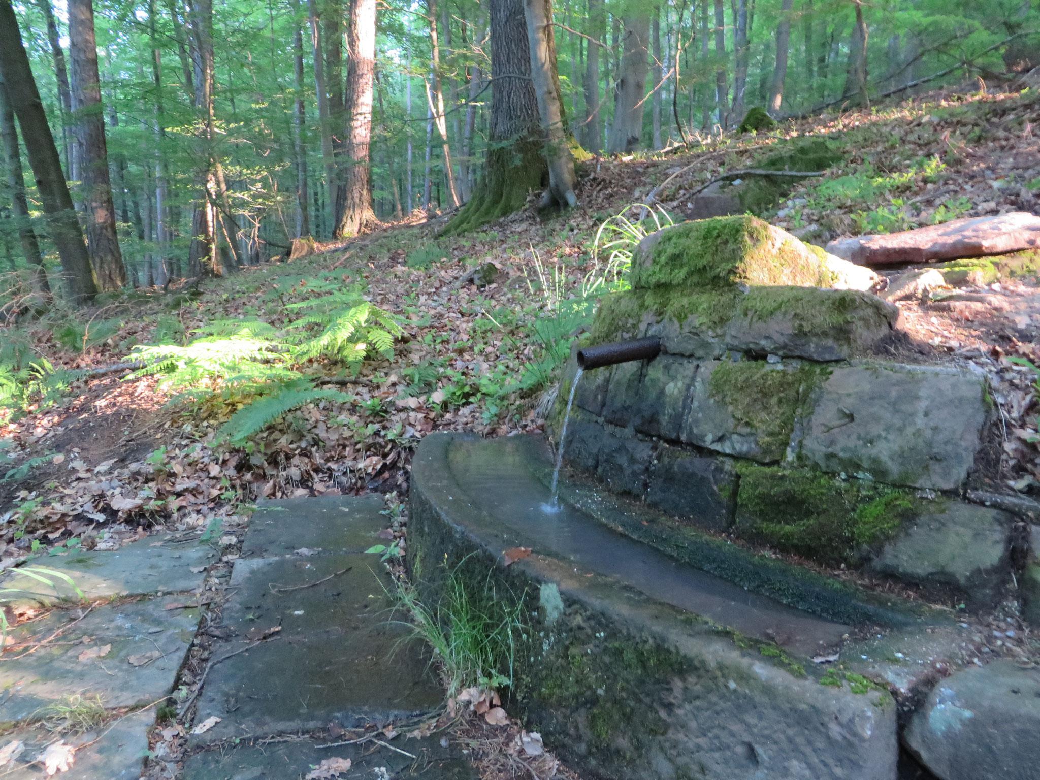Der ziemlich neue Brunnen. Good job!