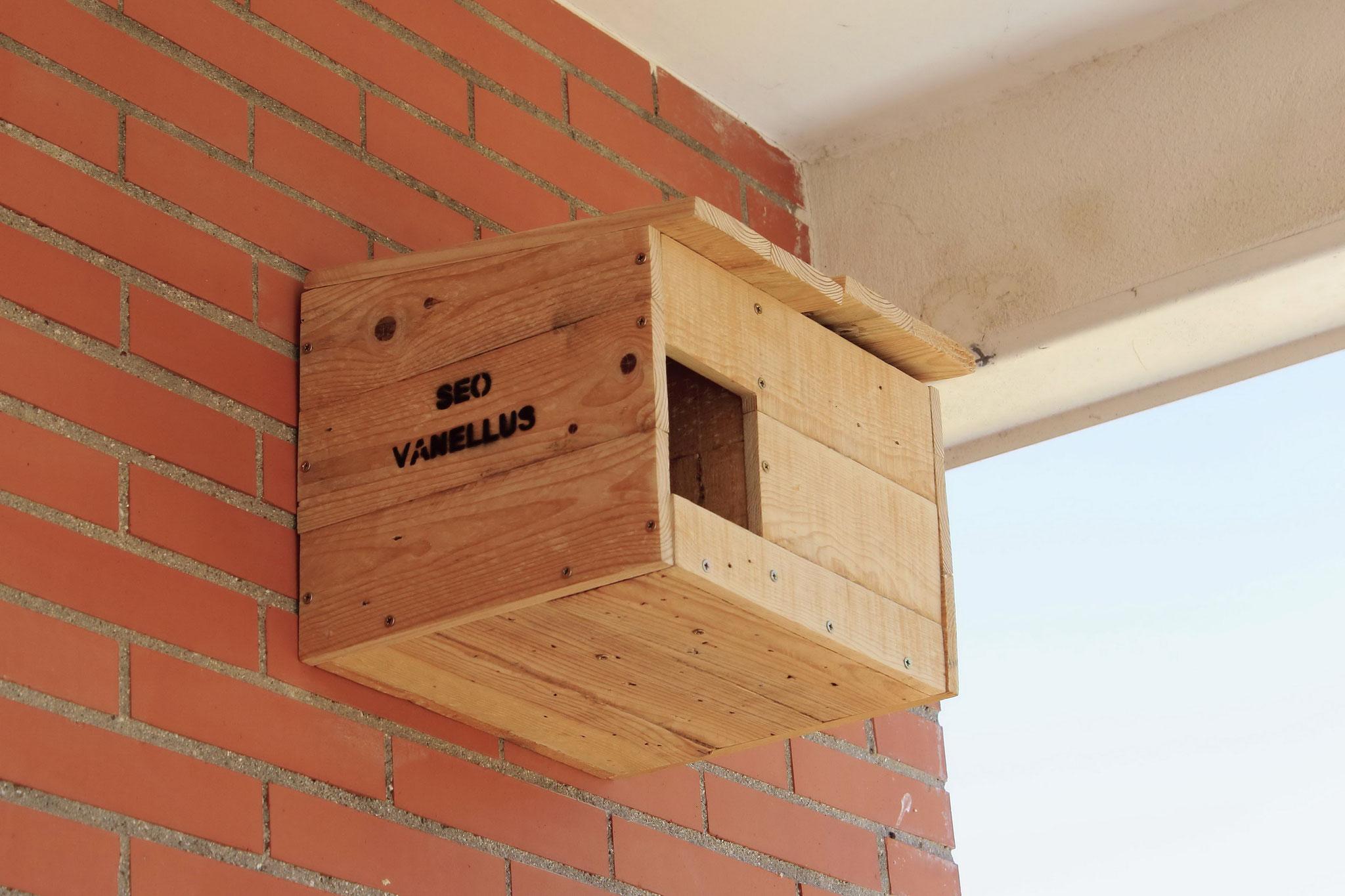 Vista lateral. Caja nido de mochuelo instalada en el IES Fernando Fernán Goméz (Humanes de Madrid)