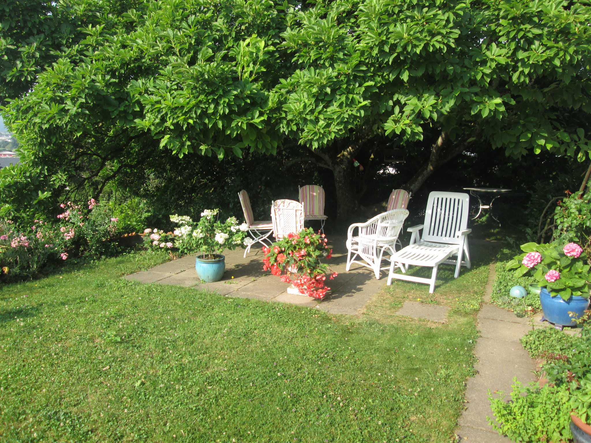 Bei den Seminaren können wir die Pausen im Garten verbringen...