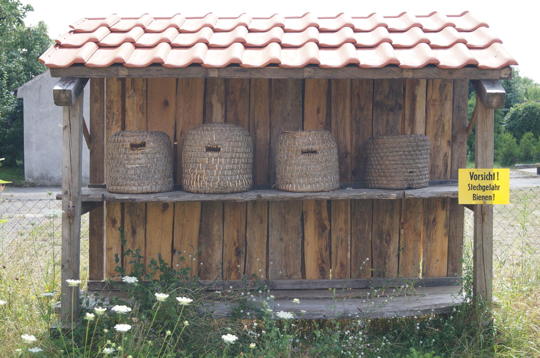 Hier sehen Sie traditionelle Bienenkörbe. Die Korbimkerei geht bis in die Zeit der Germanen zurück. Die Körbe werden aus Stroh geflochten. Die Waben werden von den Bienen darin im Naturbau angefertigt.
