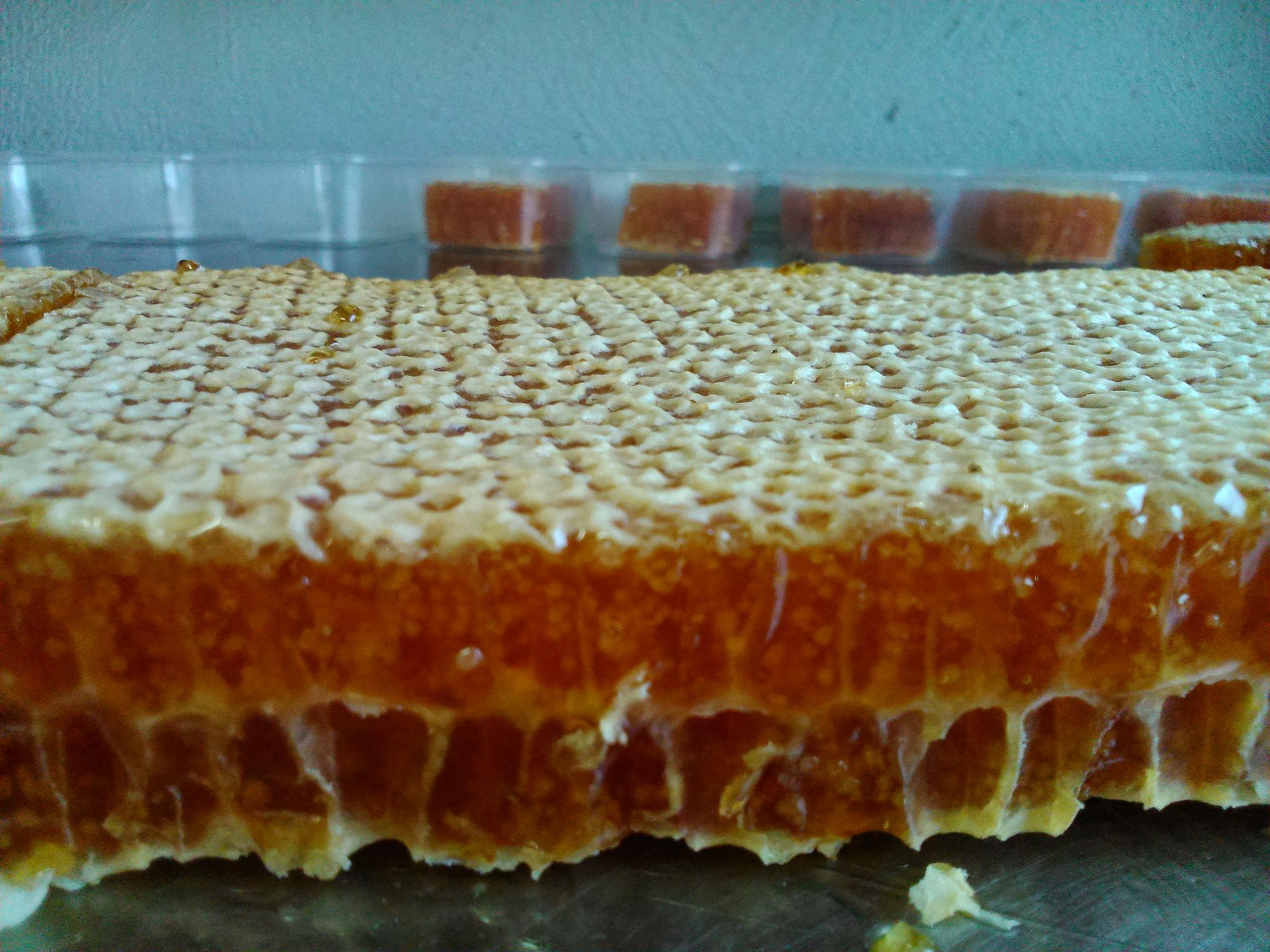 Ein volle Honigwabe wird für Scheibenhonig in 100g Stücken geschnitten...