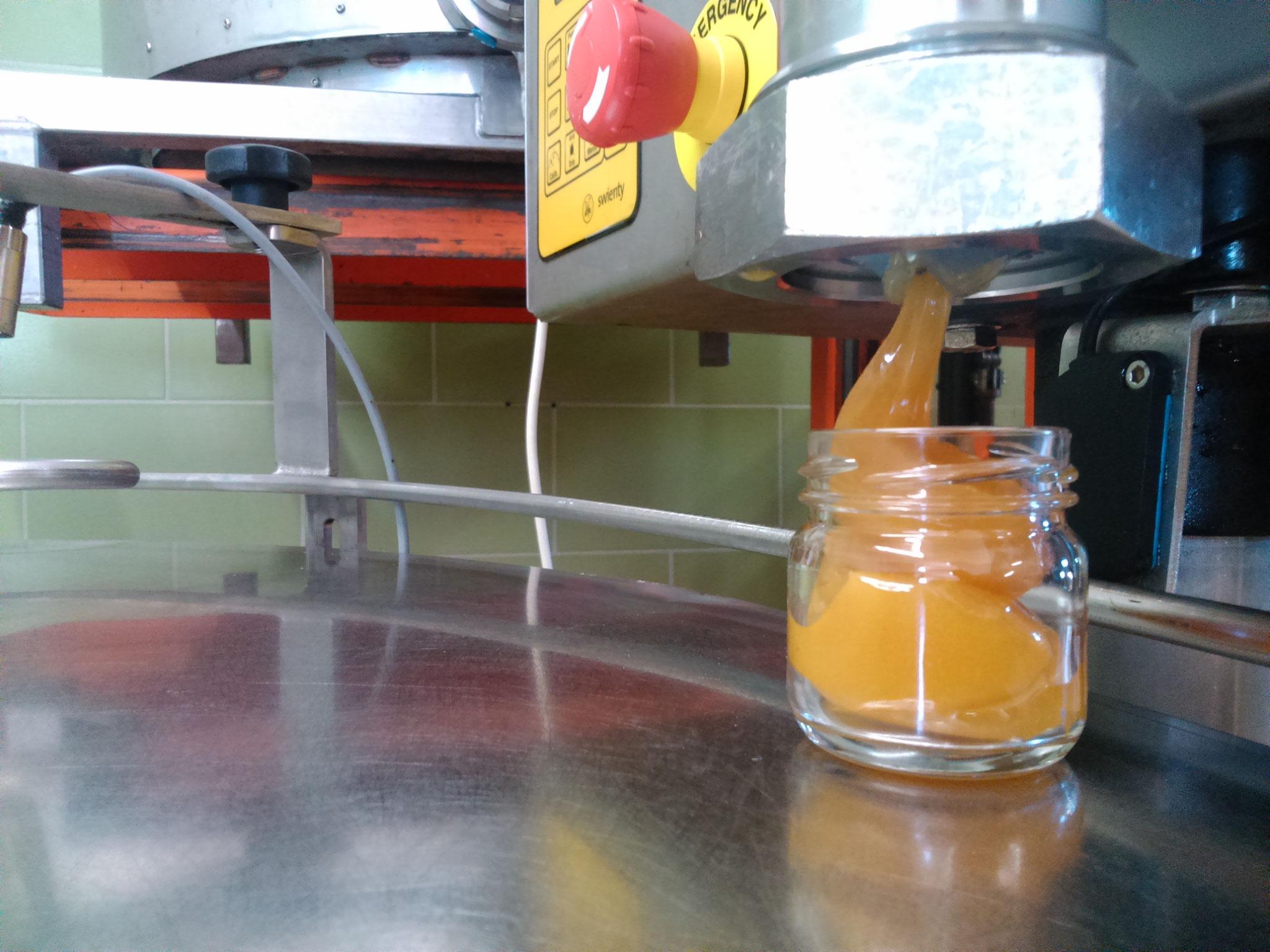 Cremiger Honig wird in ein 250g Glas gefüllt
