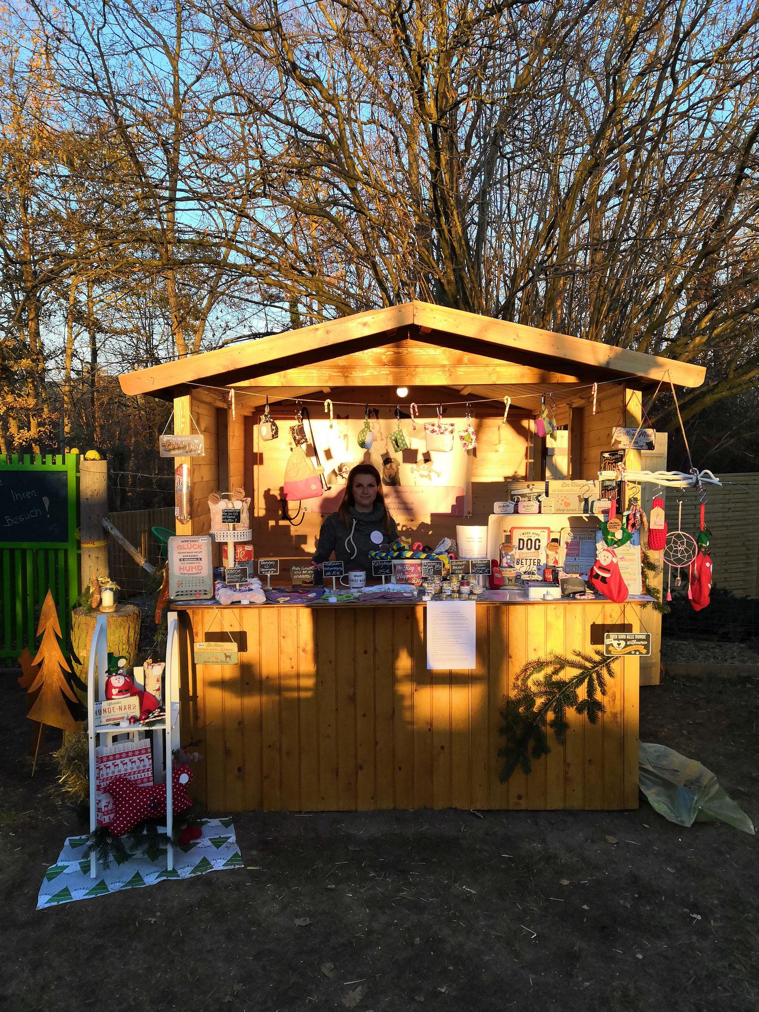 Hundeweihnachtsmarkt (Hundeschule Niedernberg Matthias Reinhard) 11/2018