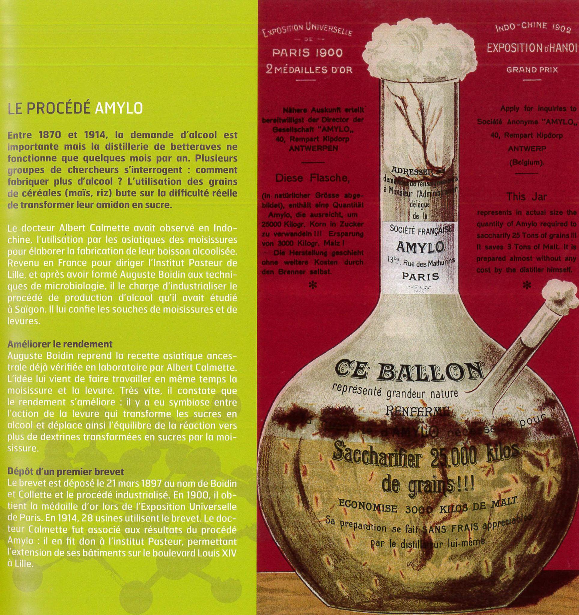 """Extrait """"100 ans d'enzymes à Seclin"""" par DSM Food Specialties - 2008"""