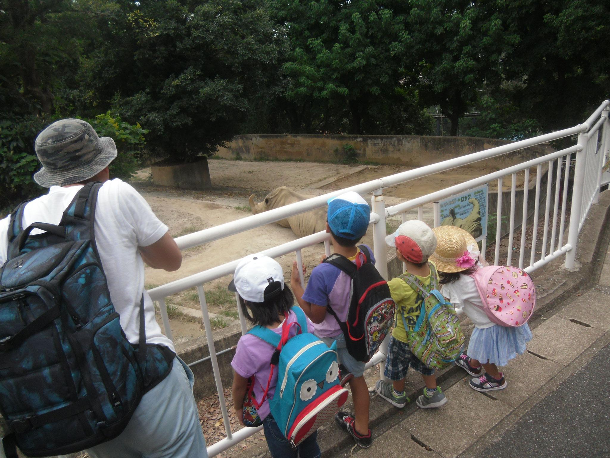 5月 動物園遠足