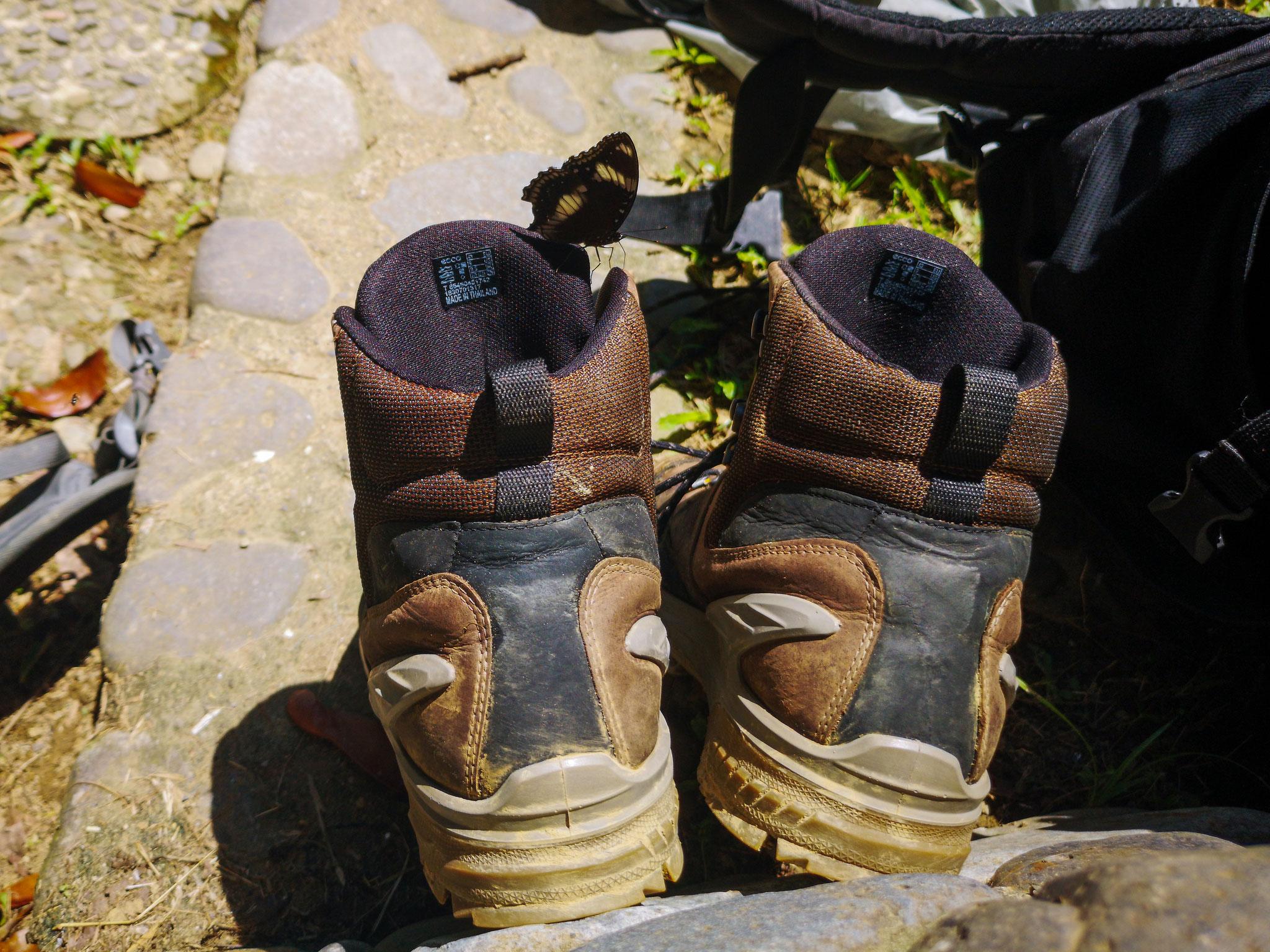 Schuhe trocknen... noch immer!
