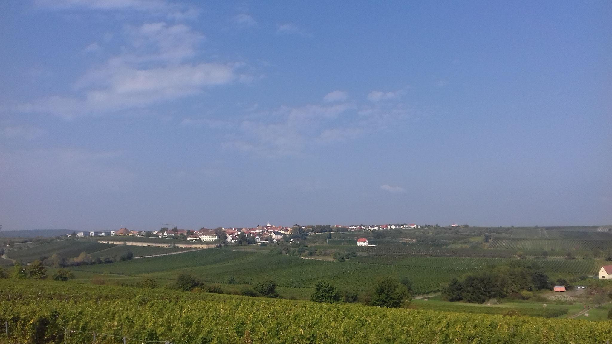Blick auf Herxheim am Berg